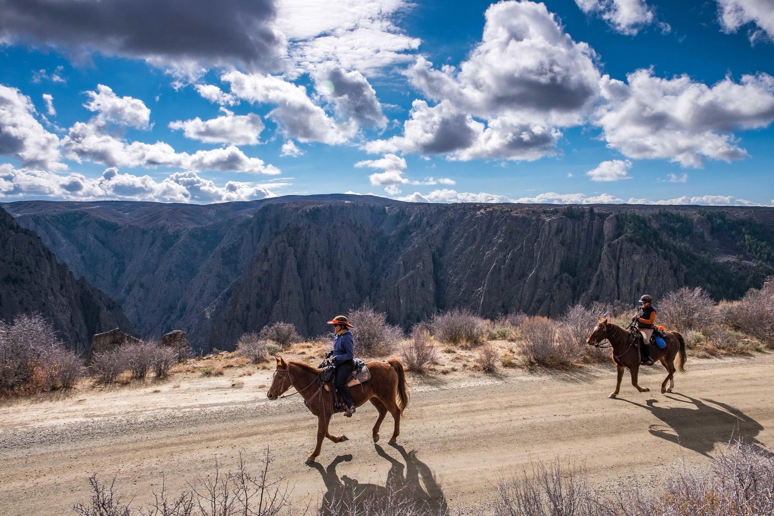 Horseback riding is available on the North Rim only, and it is a beautiful place to ride!