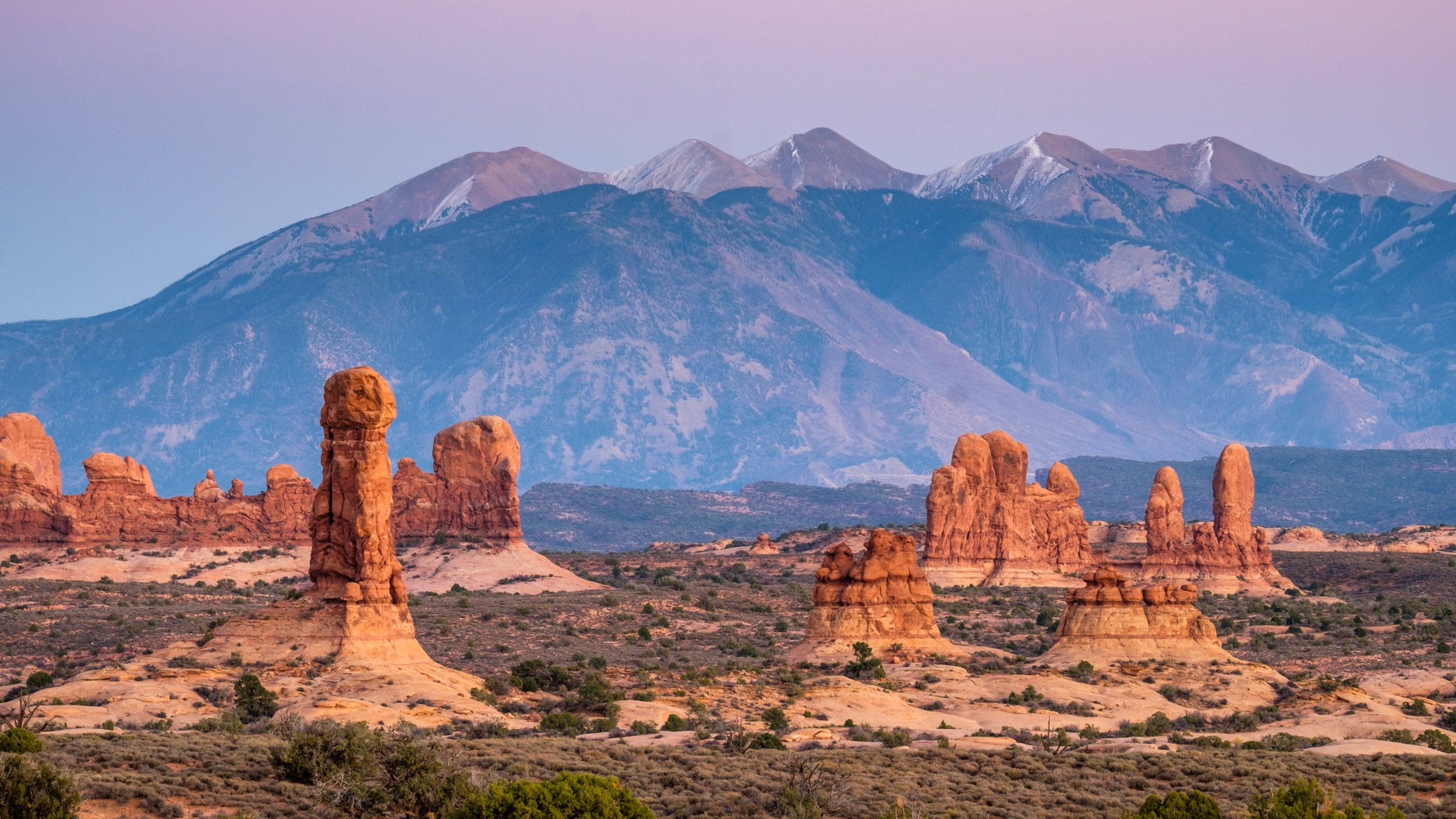 Rock pinnacles near the Windows section of the park, with the La Sal Mountains as a backdrop.