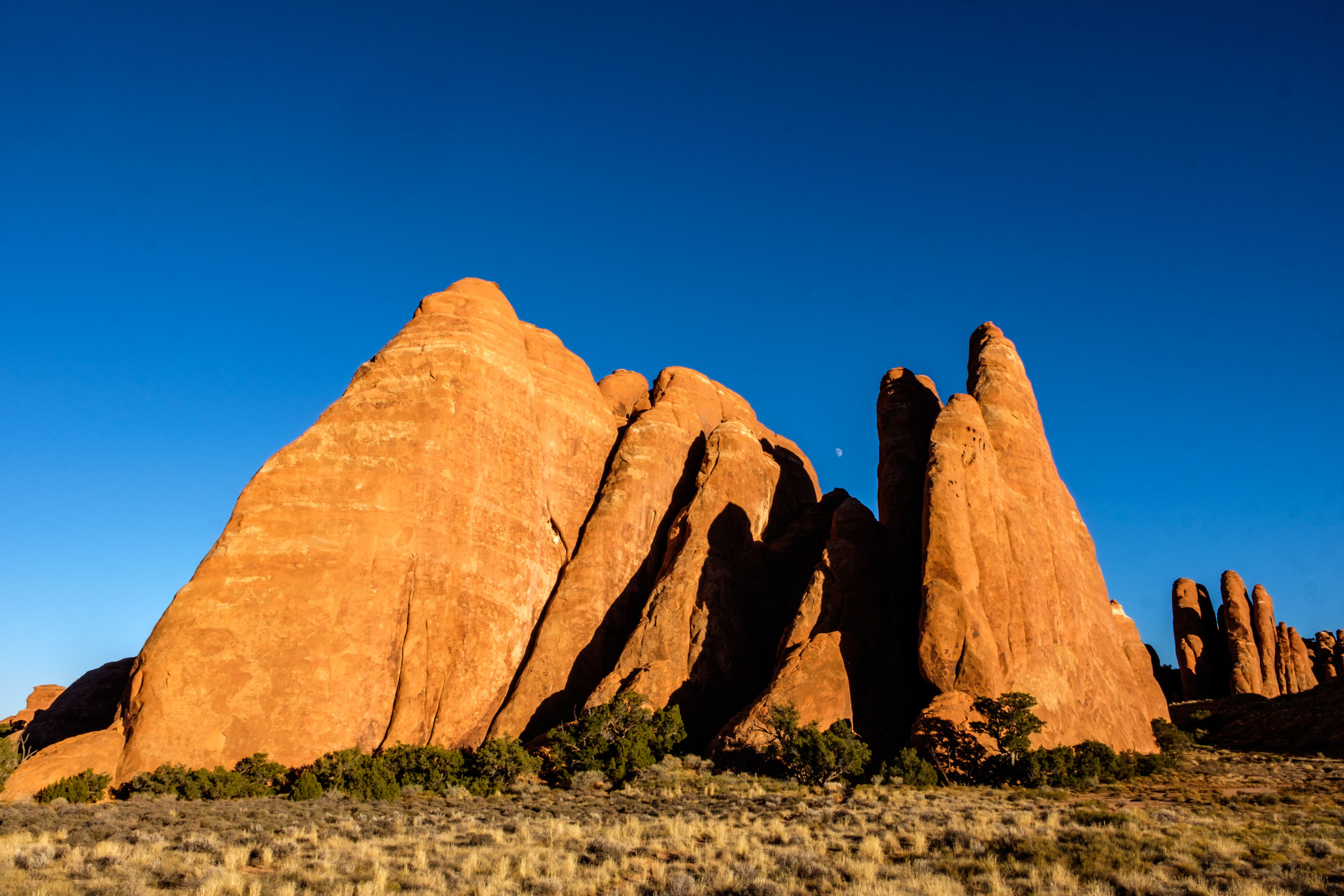 Fins of sandstone near Sand Dune Arch.