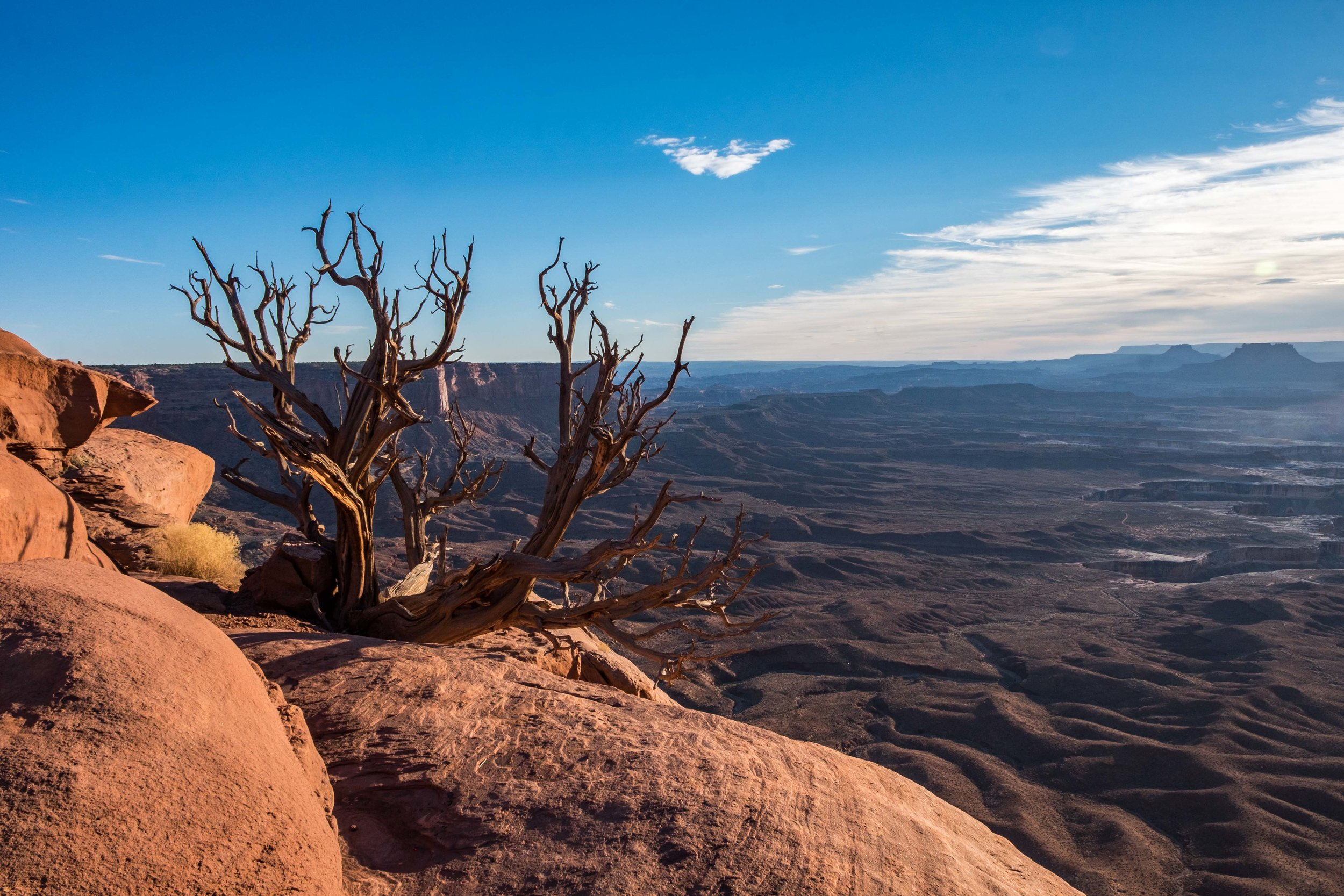 Our first stop was the Islands in the Sky section, the most visited area of Canyonlands.