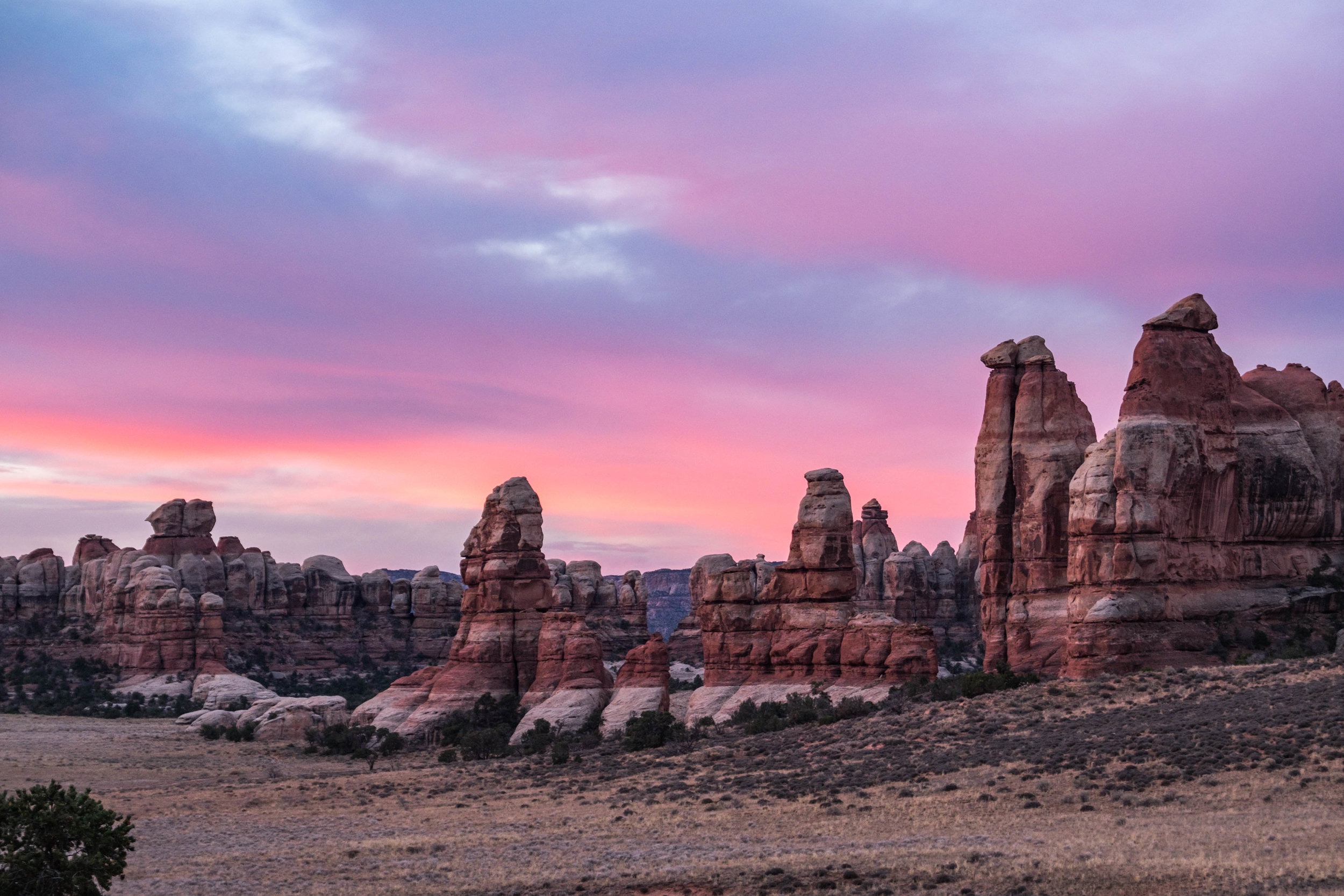 Gorgeous light and hoodoos everywhere.