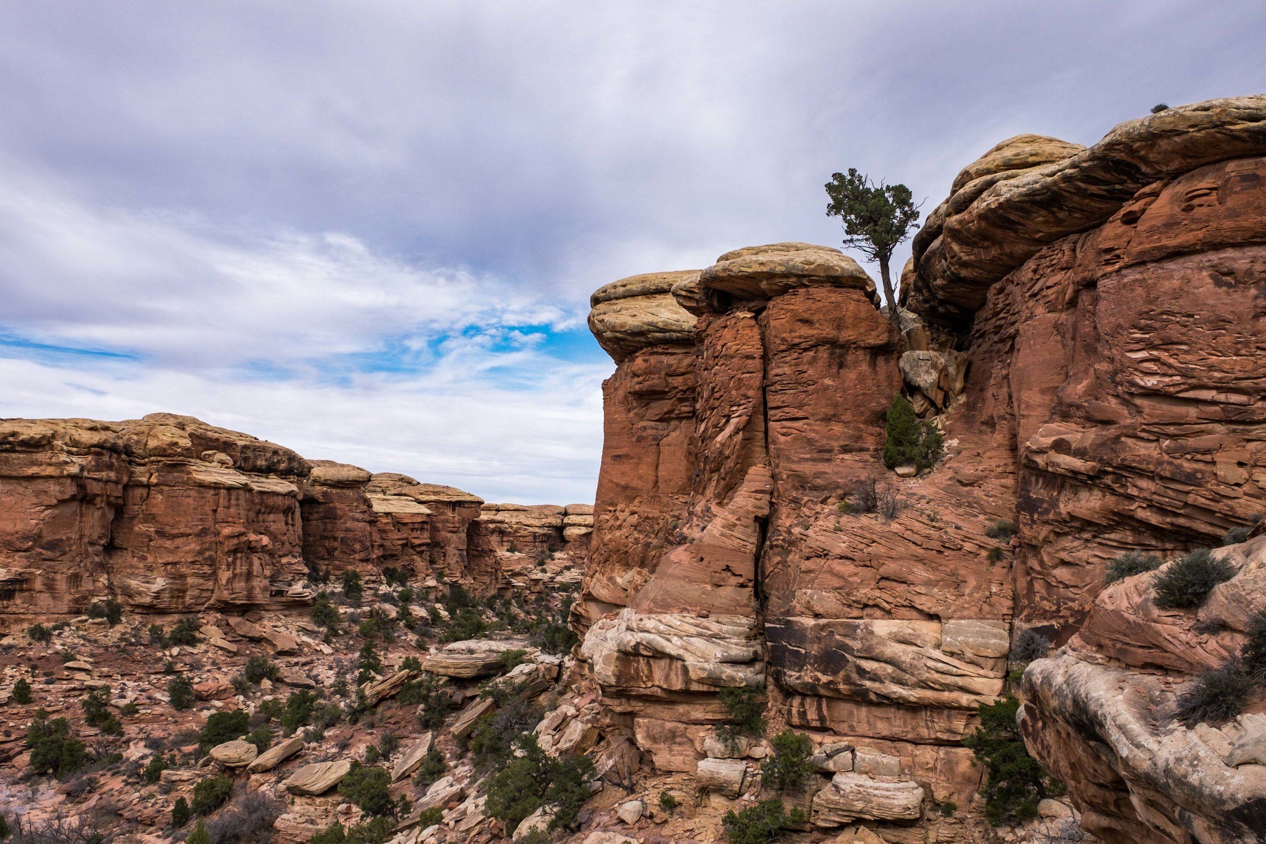 Canyonlands National Park - 069.jpg