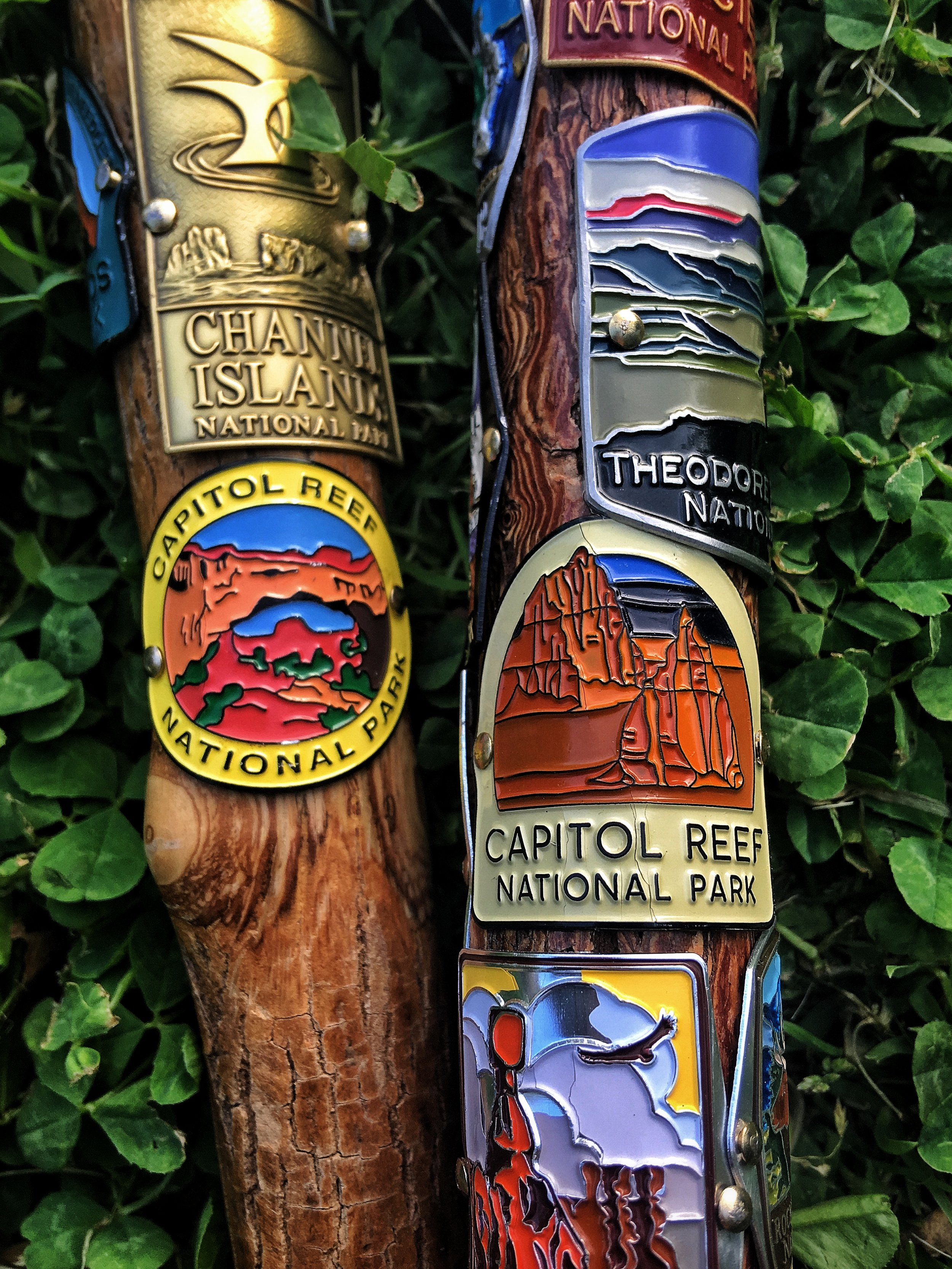Hiking stick medallions from Capitol Reef National Park in southern Utah.