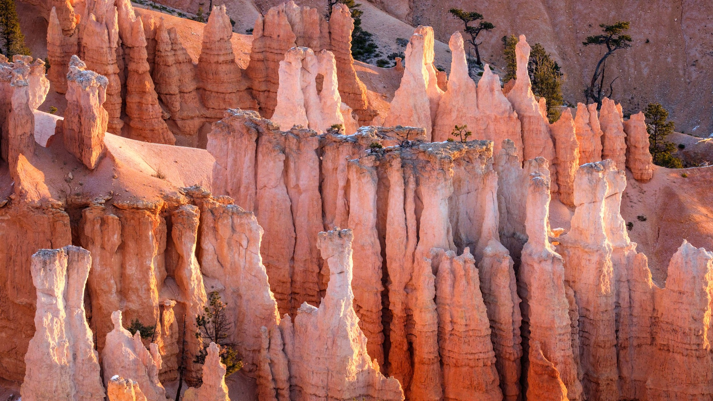 The hoodoos are too numerous to count!