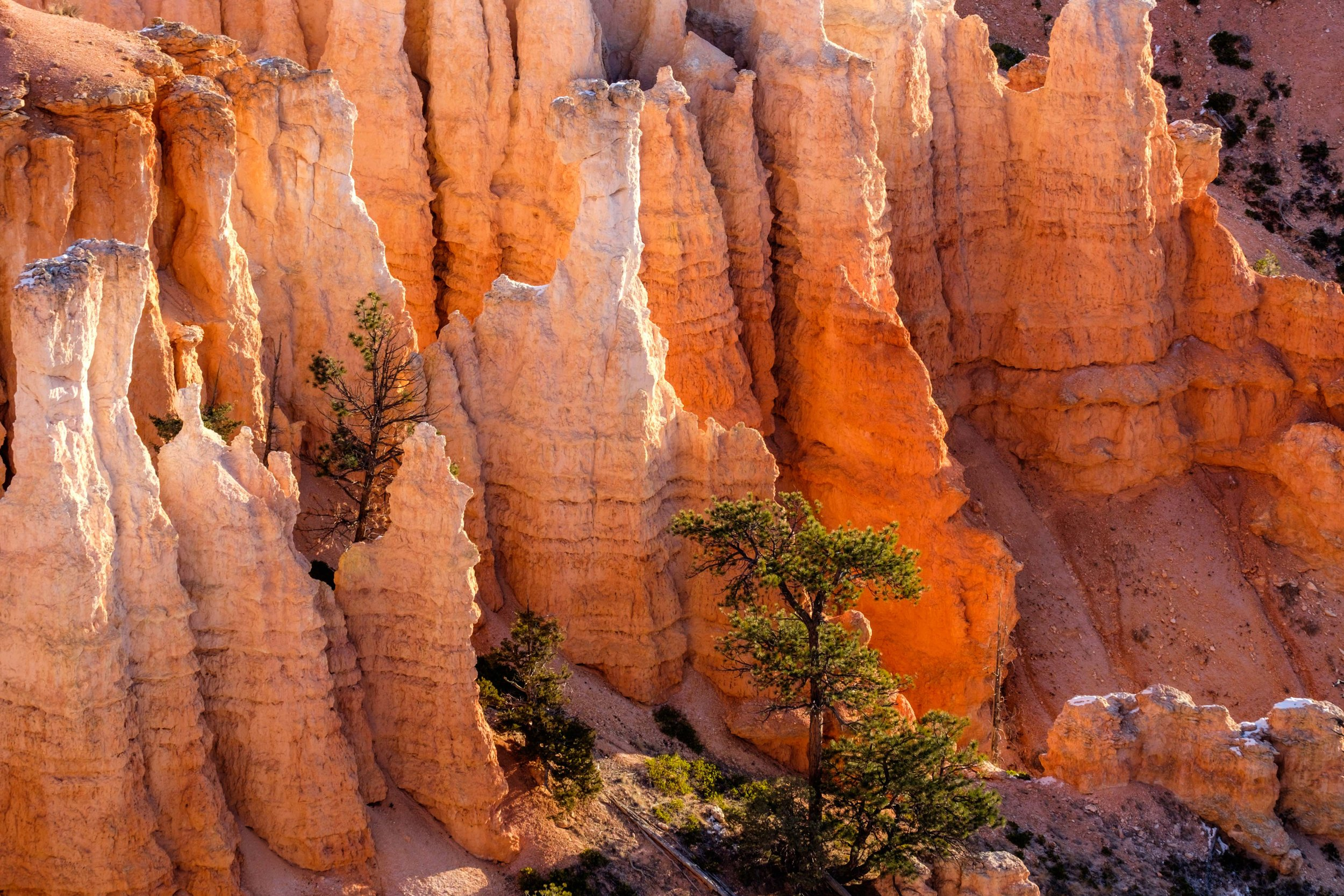 Bryce Canyon National Park - 031.jpg