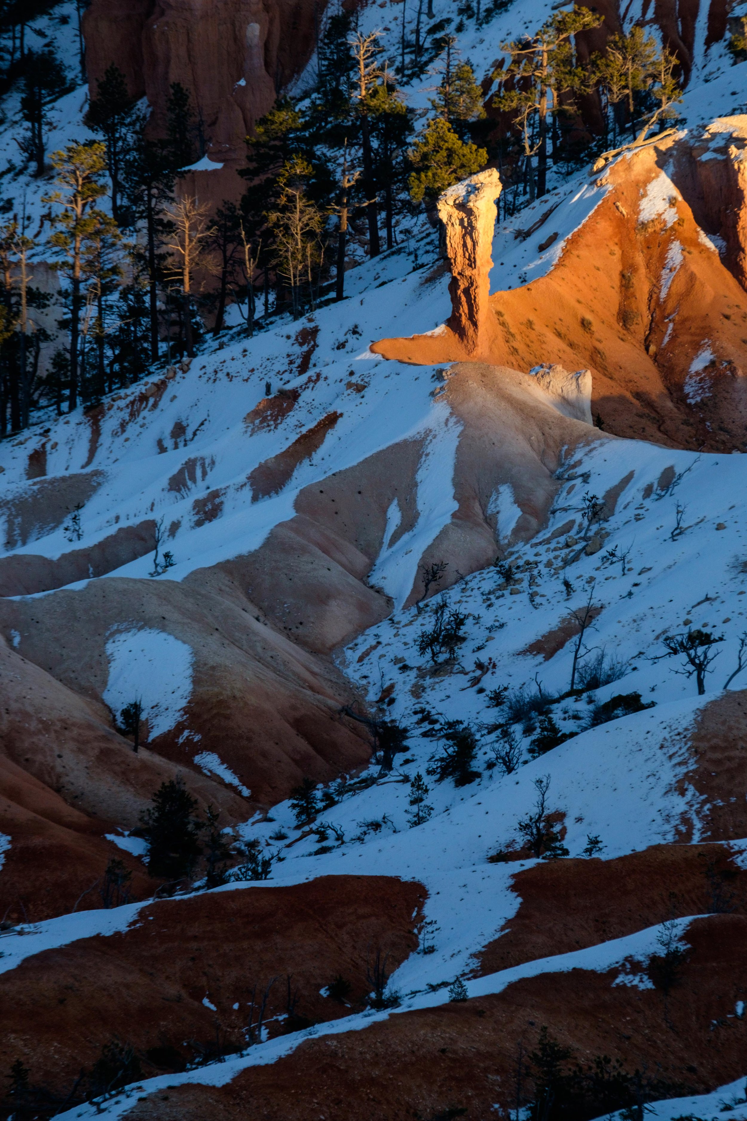 Bryce Canyon National Park - 054.jpg