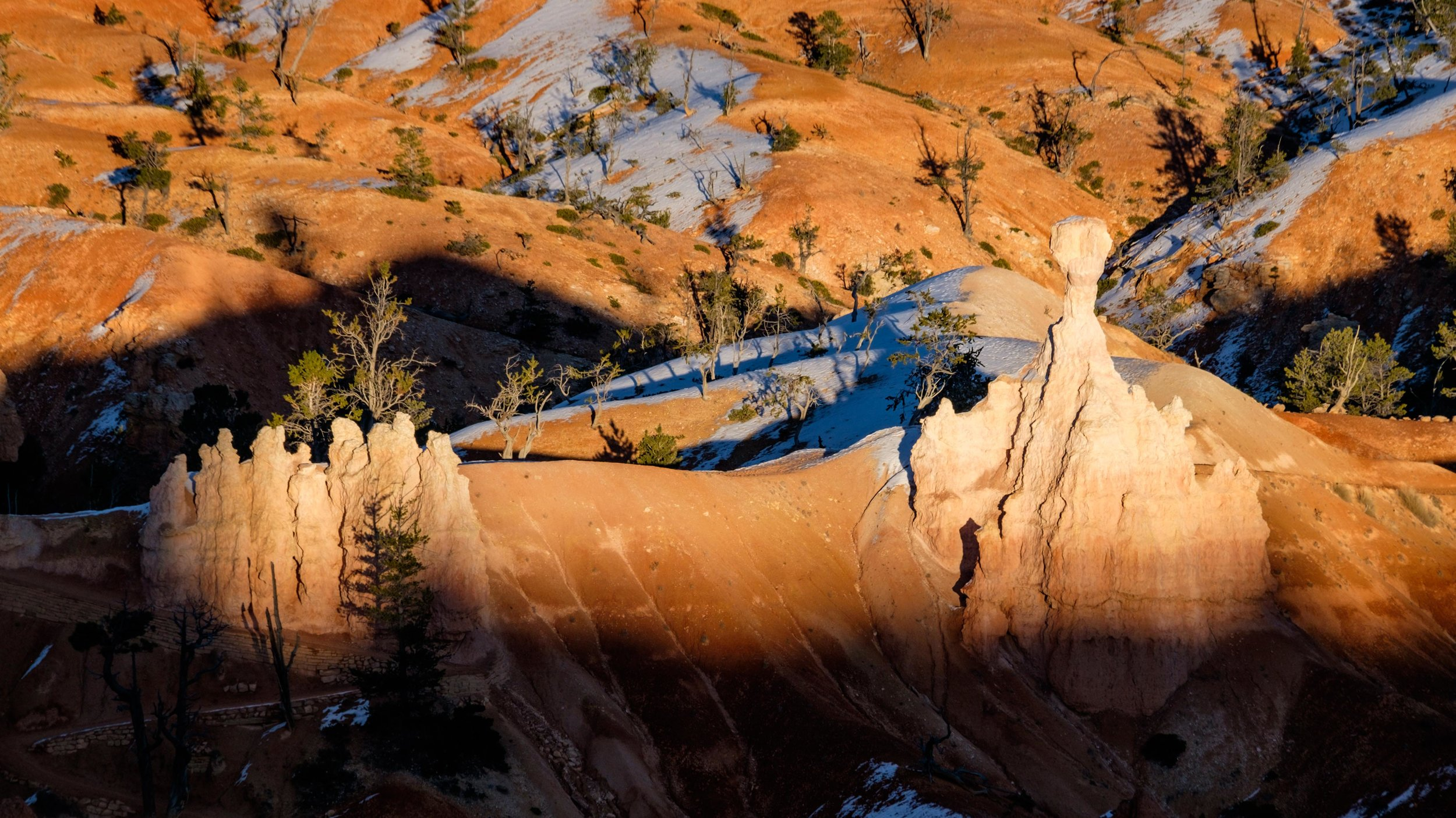 The hoodoos as seen from Sunset Point under the glow of the falling sun.