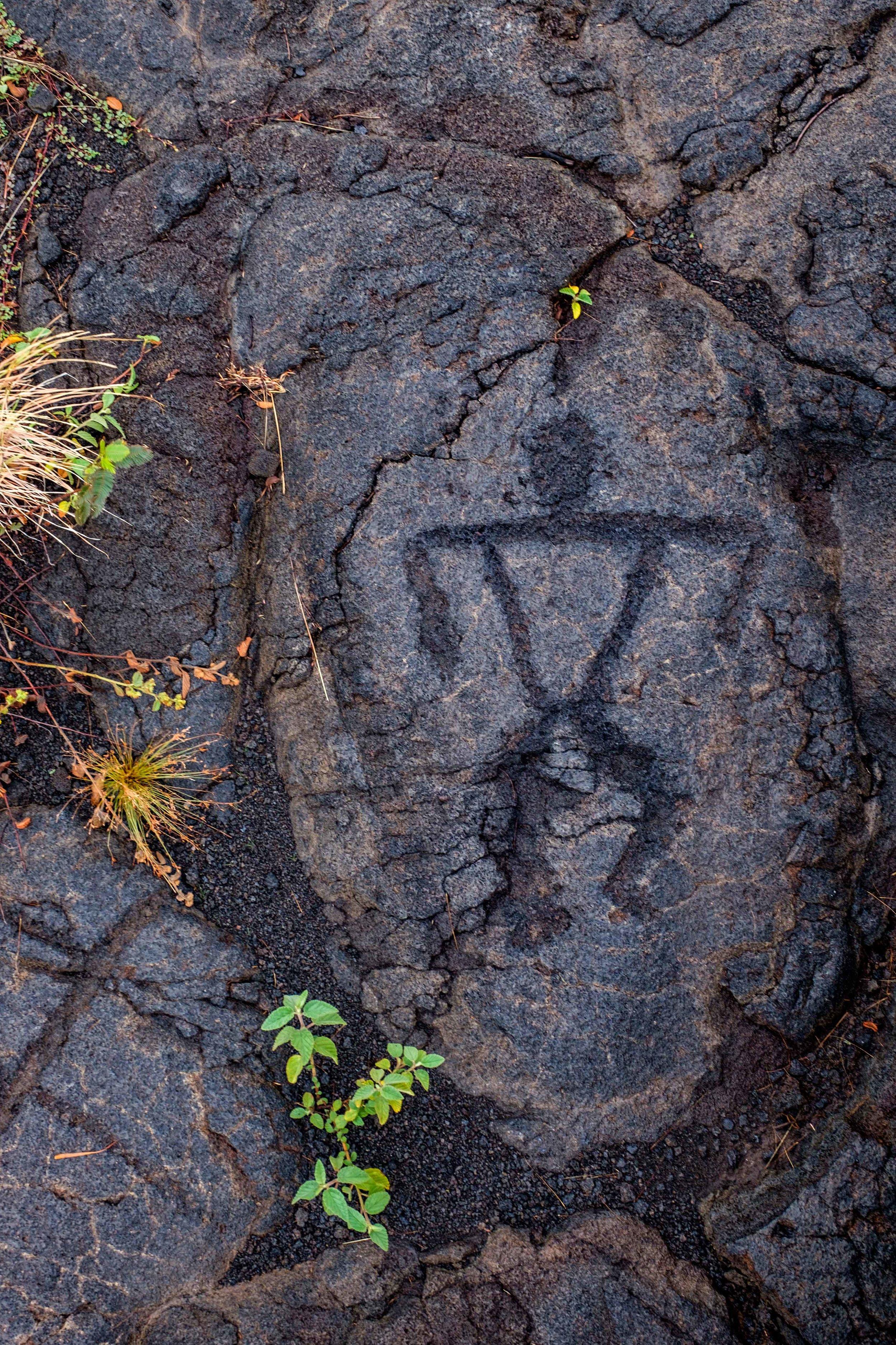 Volcanoes National Park - 040.jpg