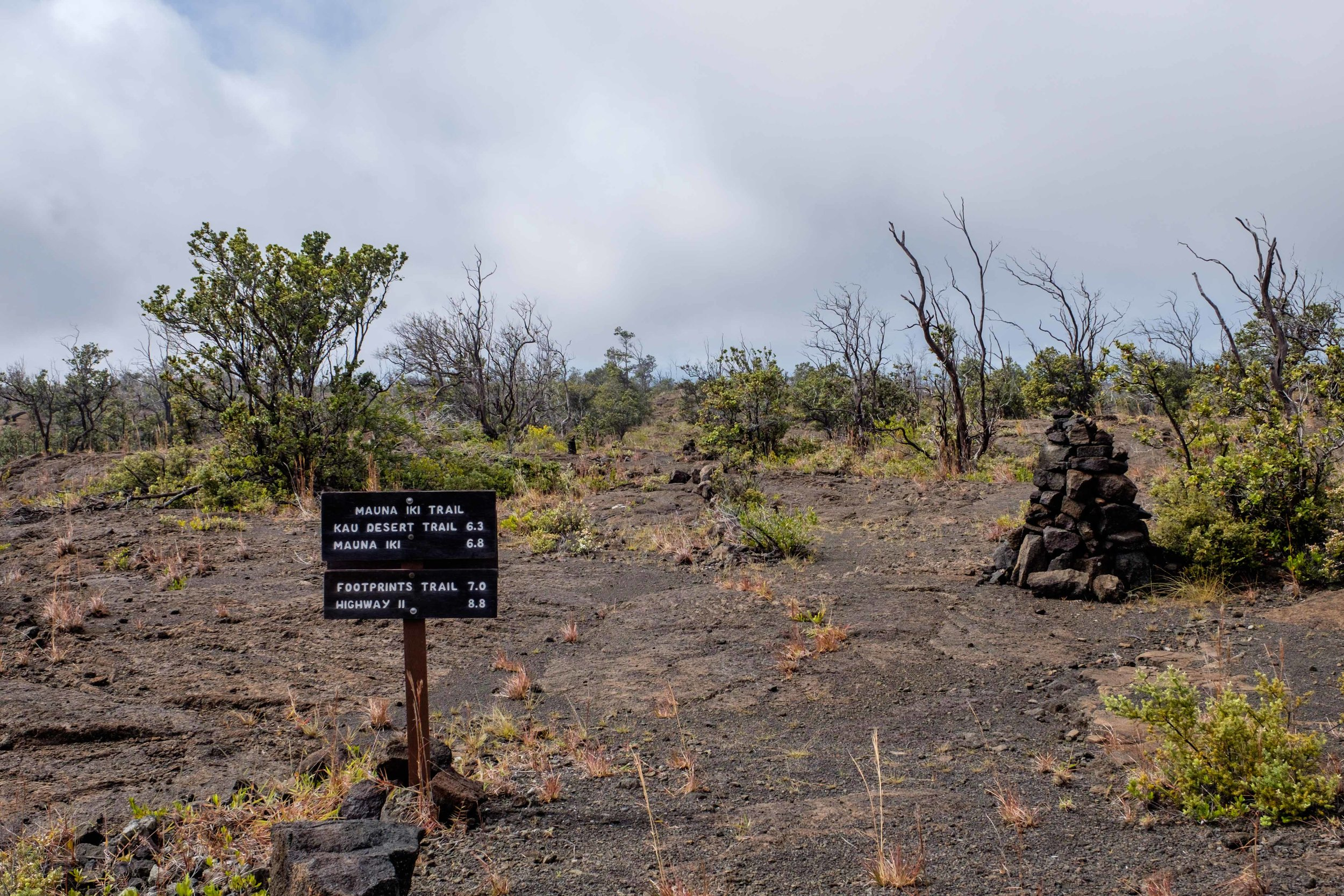 One of our favorite activities in the park was hiking the Kilauea Iki trail.