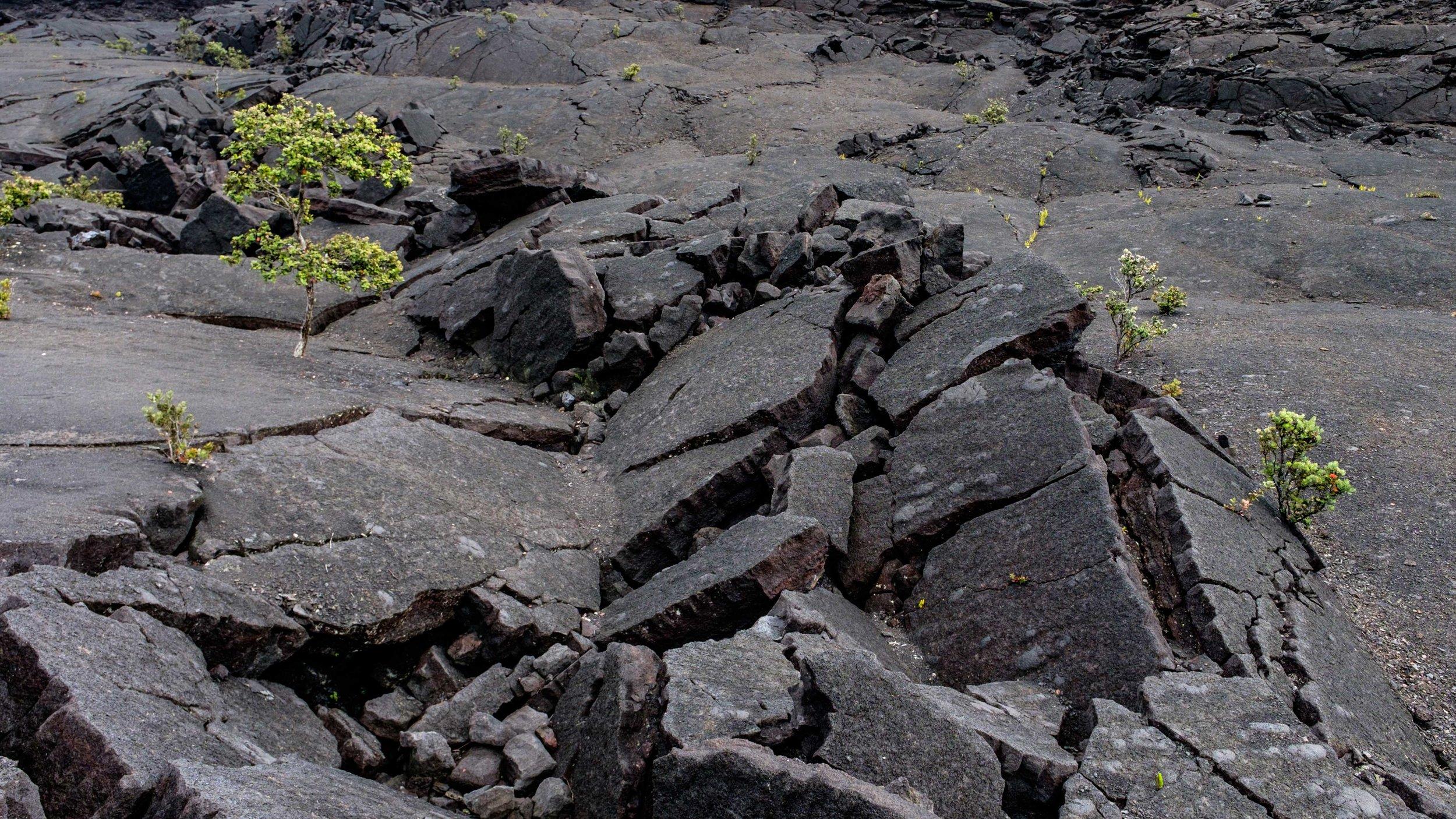 Volcanoes National Park - 061.jpg