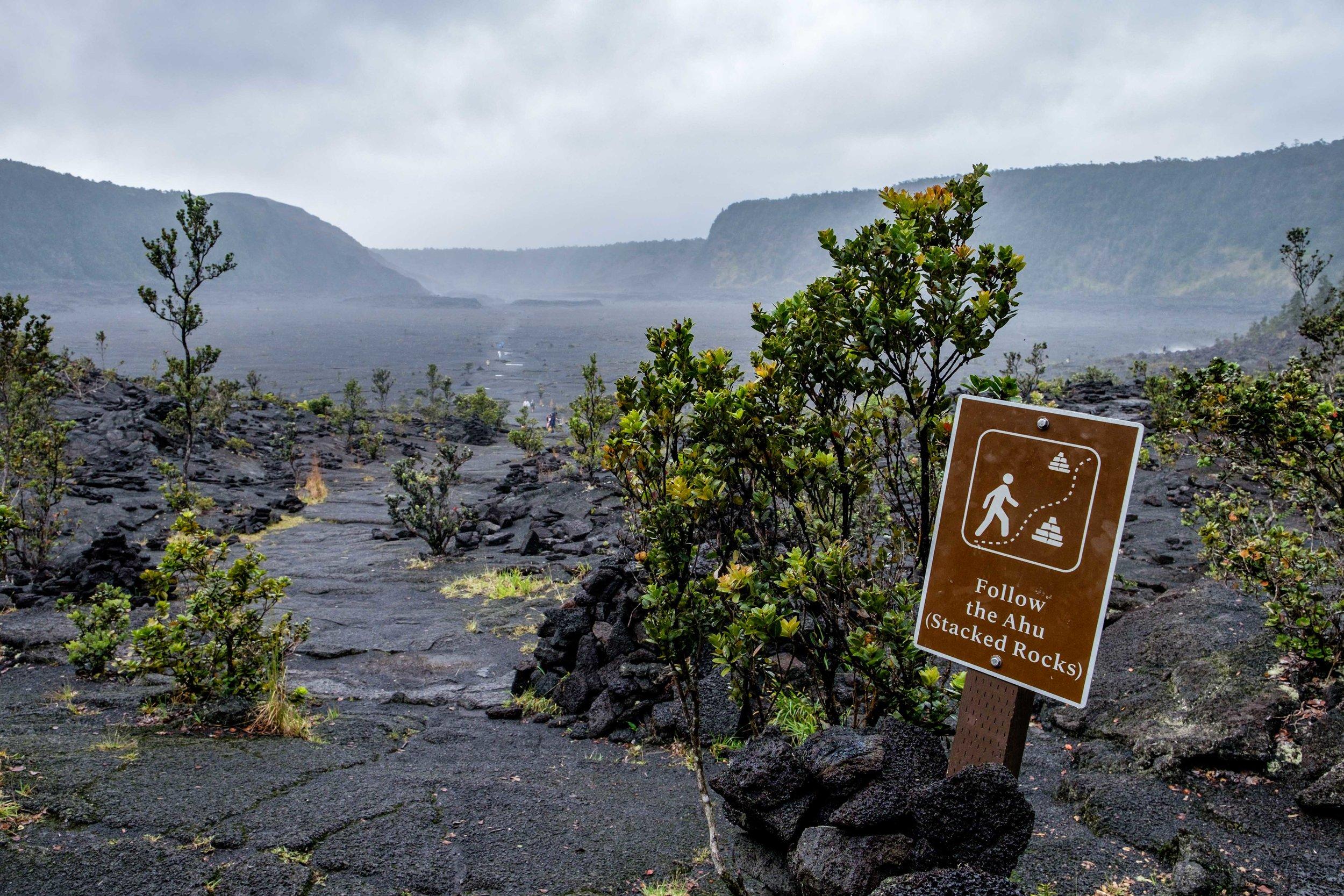 Volcanoes National Park - 064.jpg