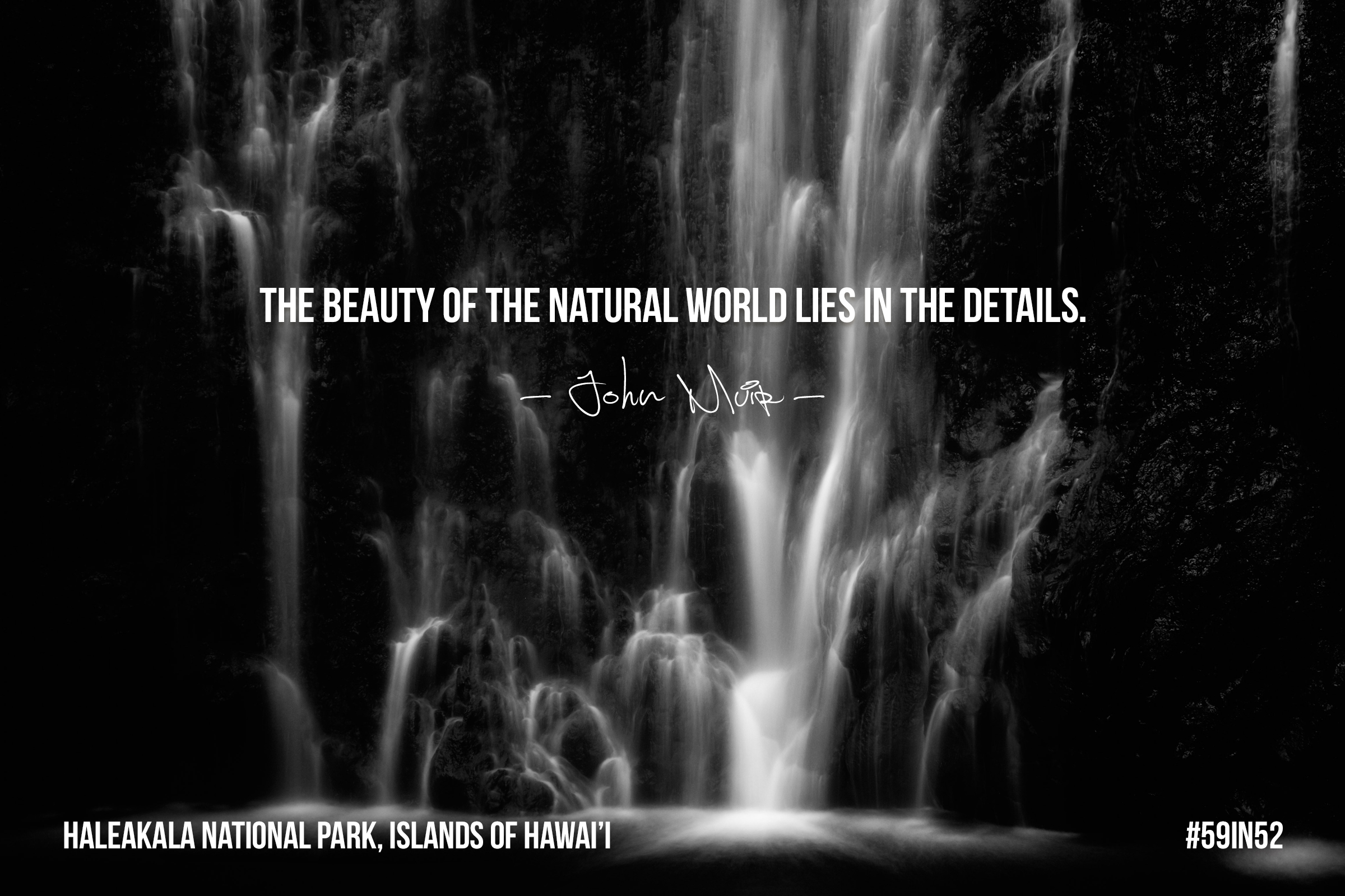 'The beauty of the natural world lies in the details.' — John Muir