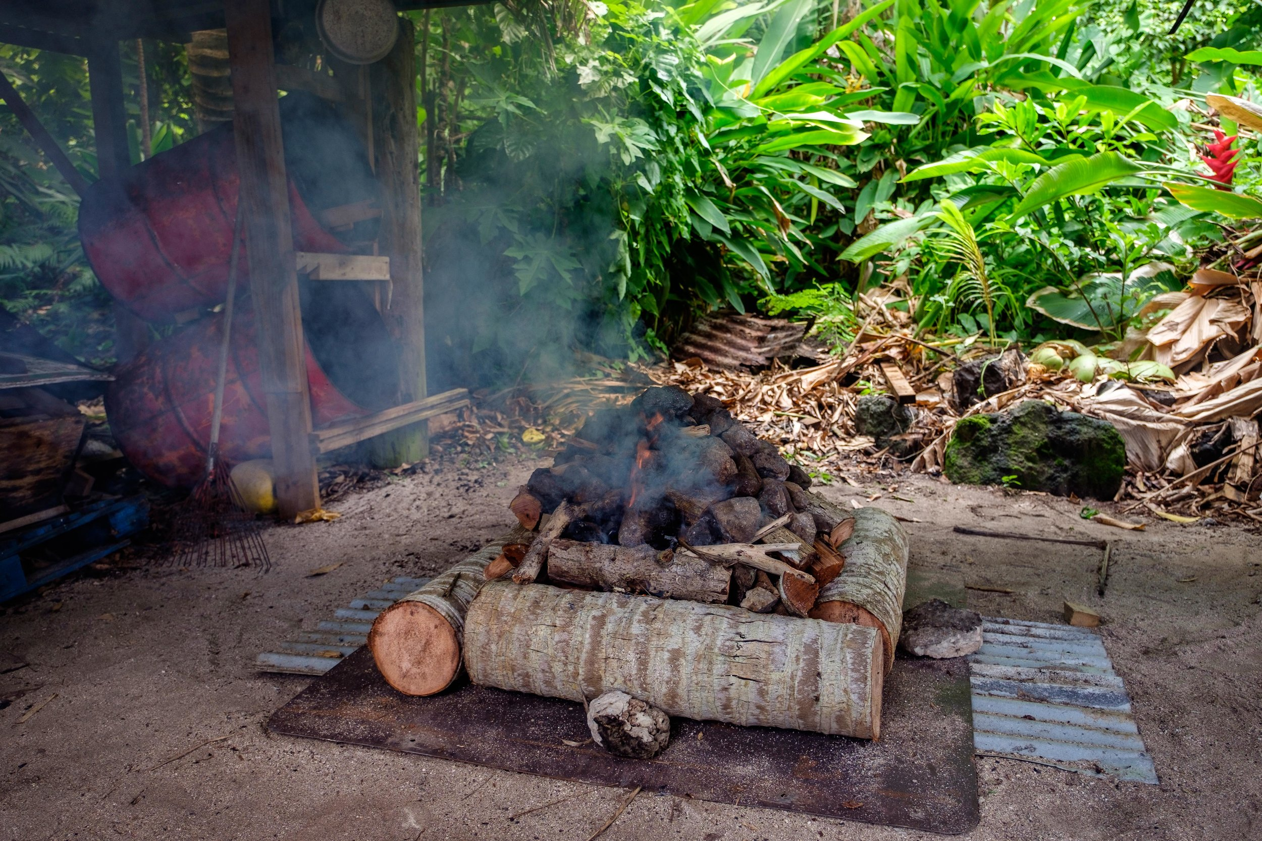 20161214-JI-American Samoa National Park-_DSF1605.jpg