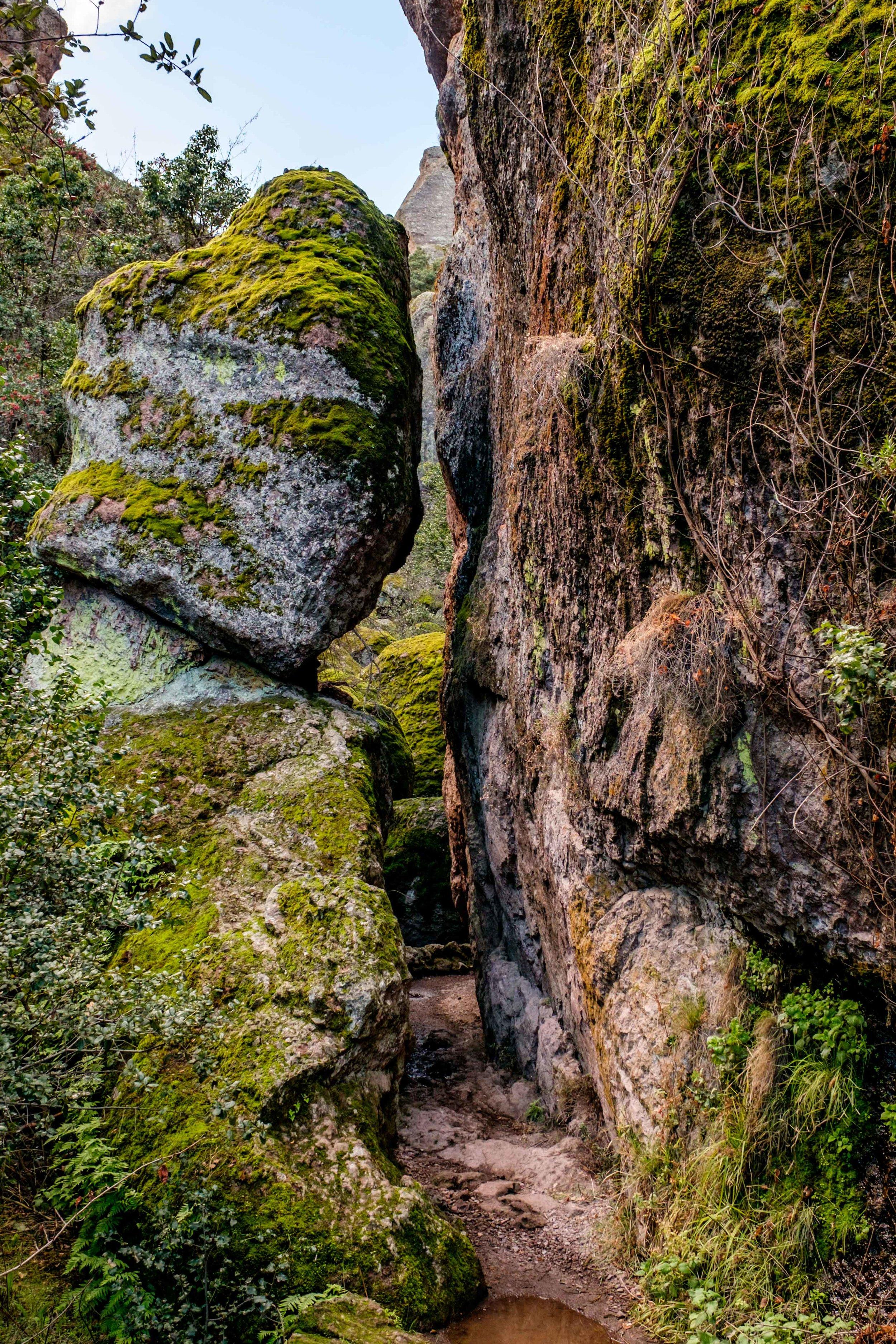 Pinnacles National Park - 009.jpg