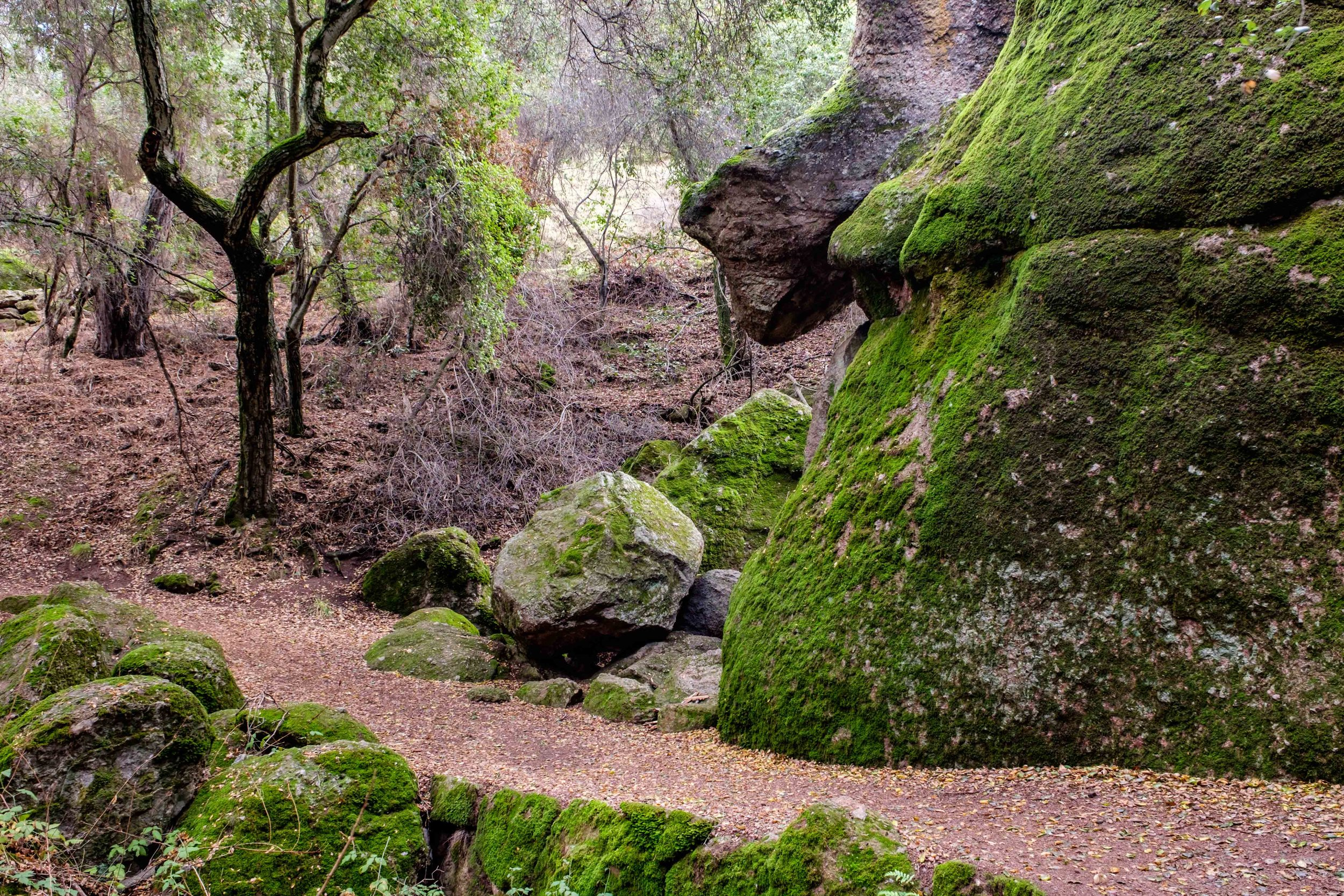 Pinnacles National Park - 029.jpg