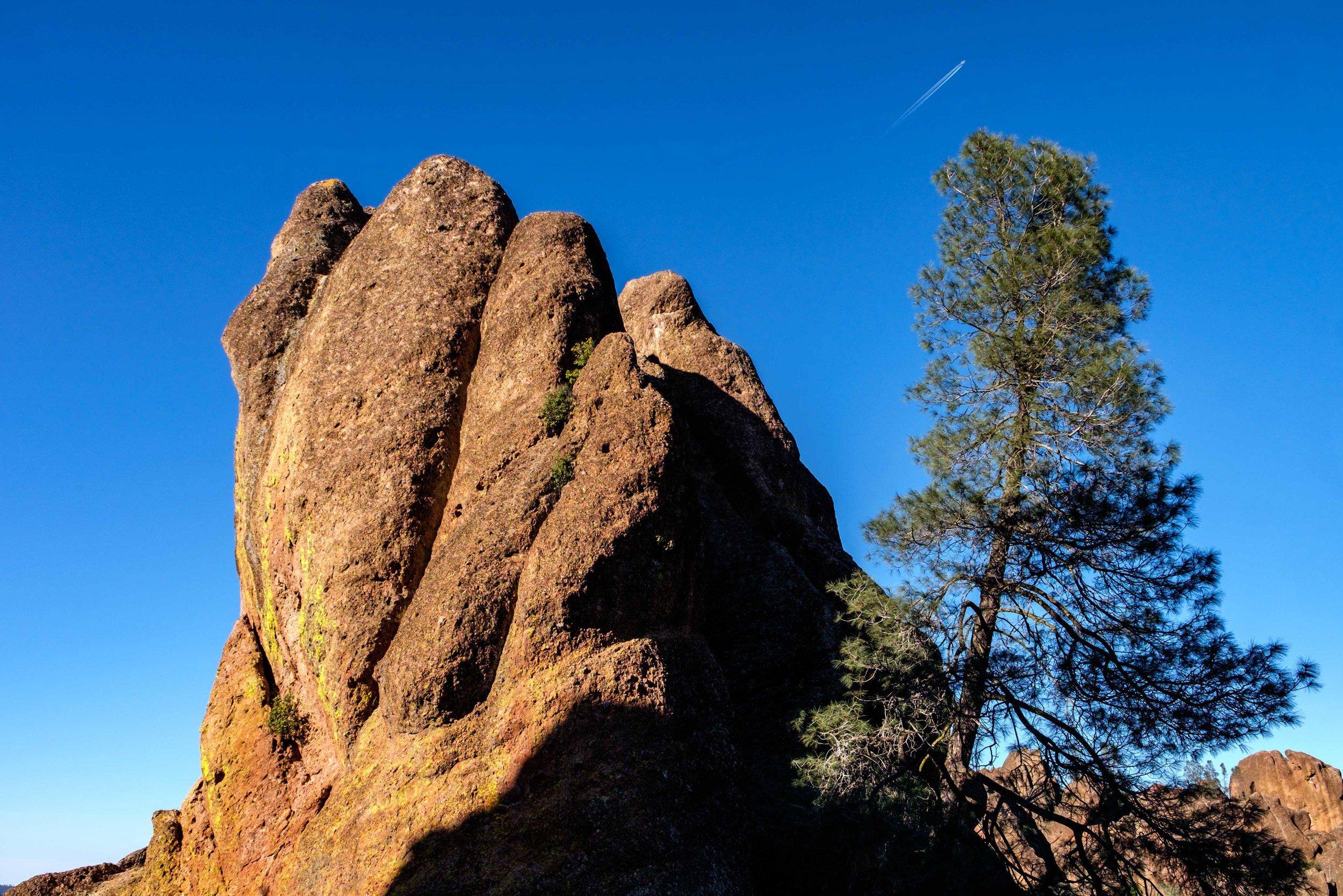 Pinnacles National Park - 038.jpg