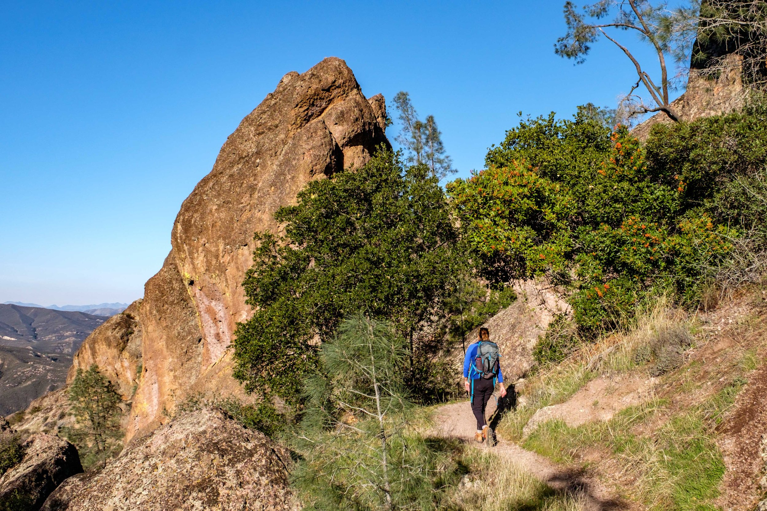 Pinnacles National Park - 044.jpg