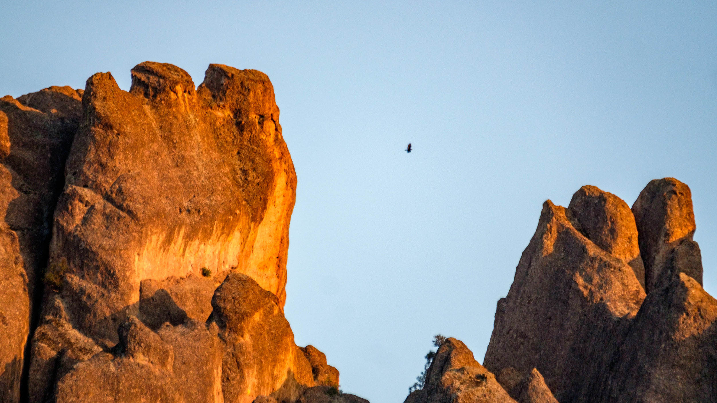 More condors soaring among the spires.