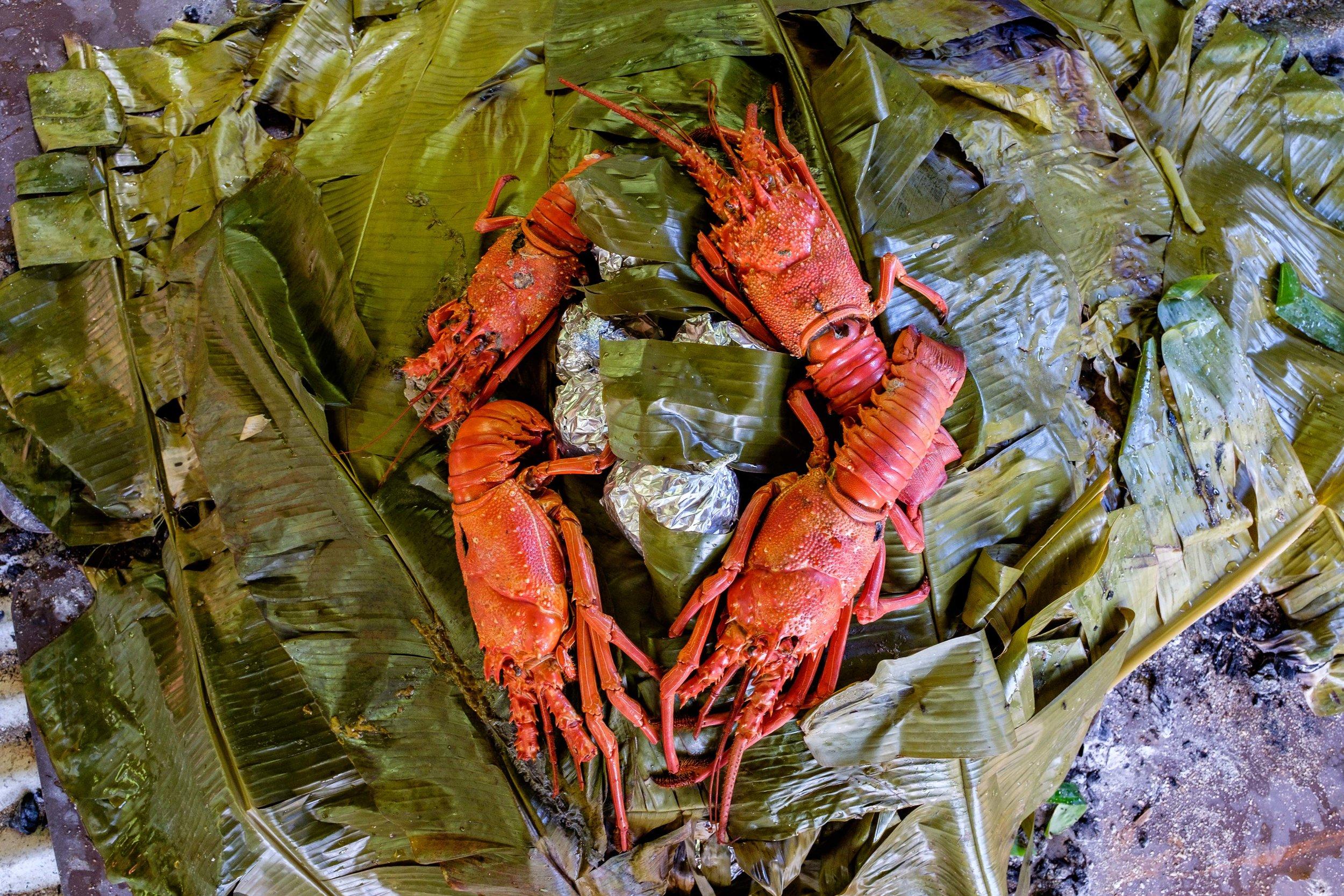 20161214-JI-American Samoa National Park-_DSF1030.jpg