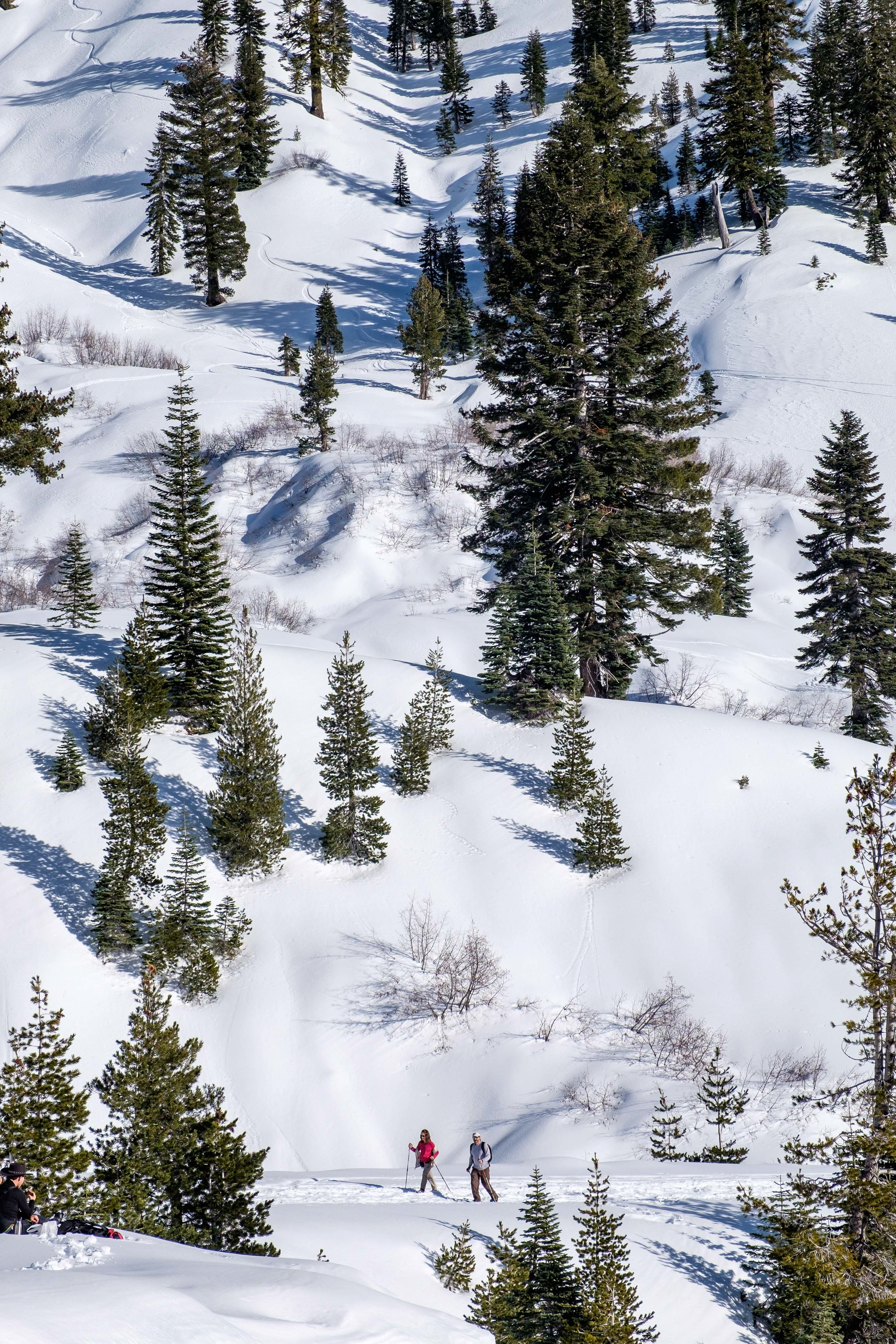 Hiking through backcountry is wonderful way to explore a snow-covered Lassen National Park!
