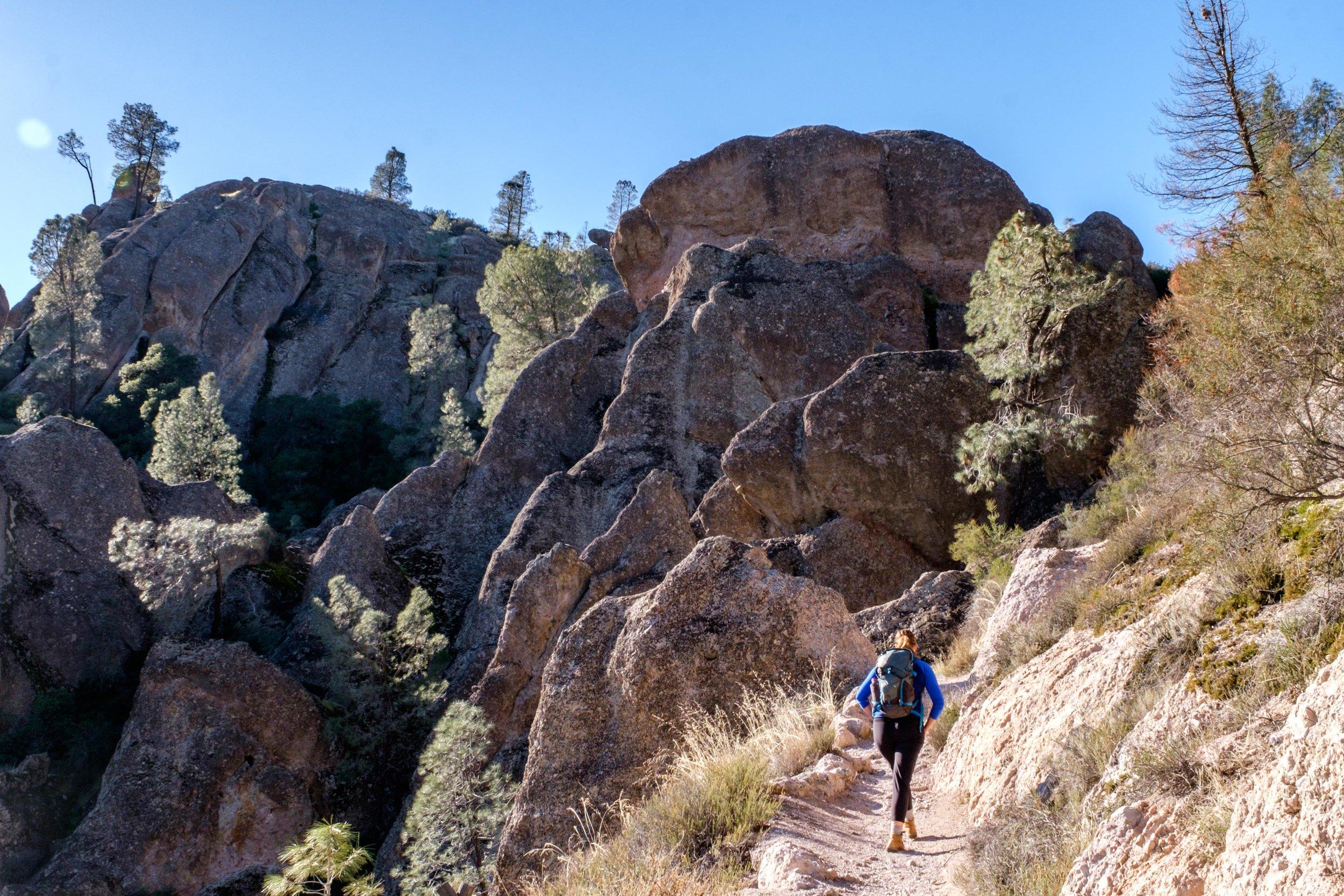 20161226-JI-Pinnacles National Park-_DSF0194.jpg