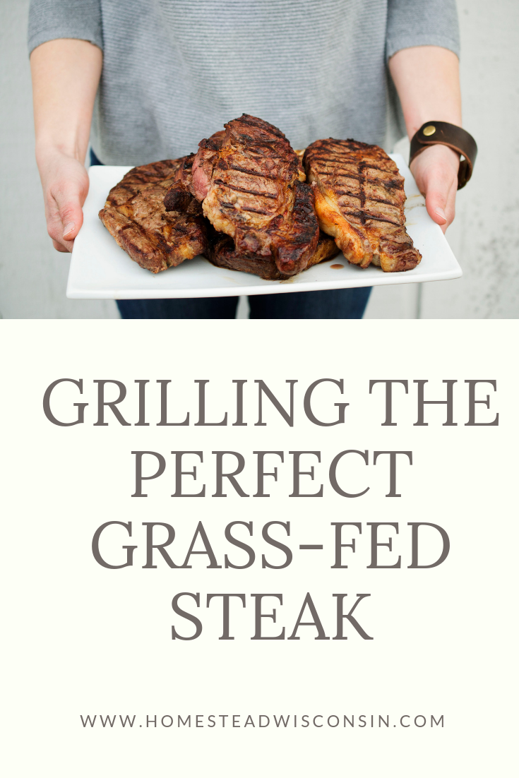 Grilling the Perfect Grassfed Steak   Homestead Wisconsin   Madison Wisconsin Farm