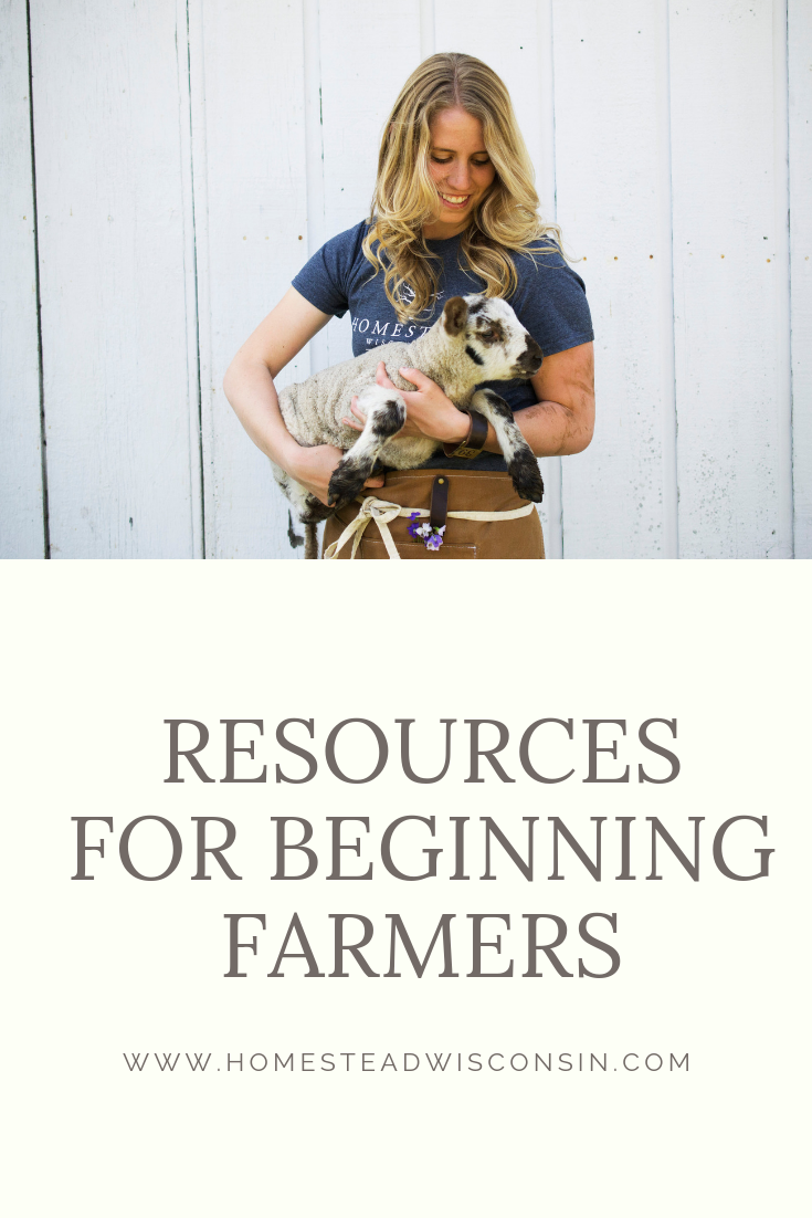 grassfed beef farm - new farmers - wisconsin