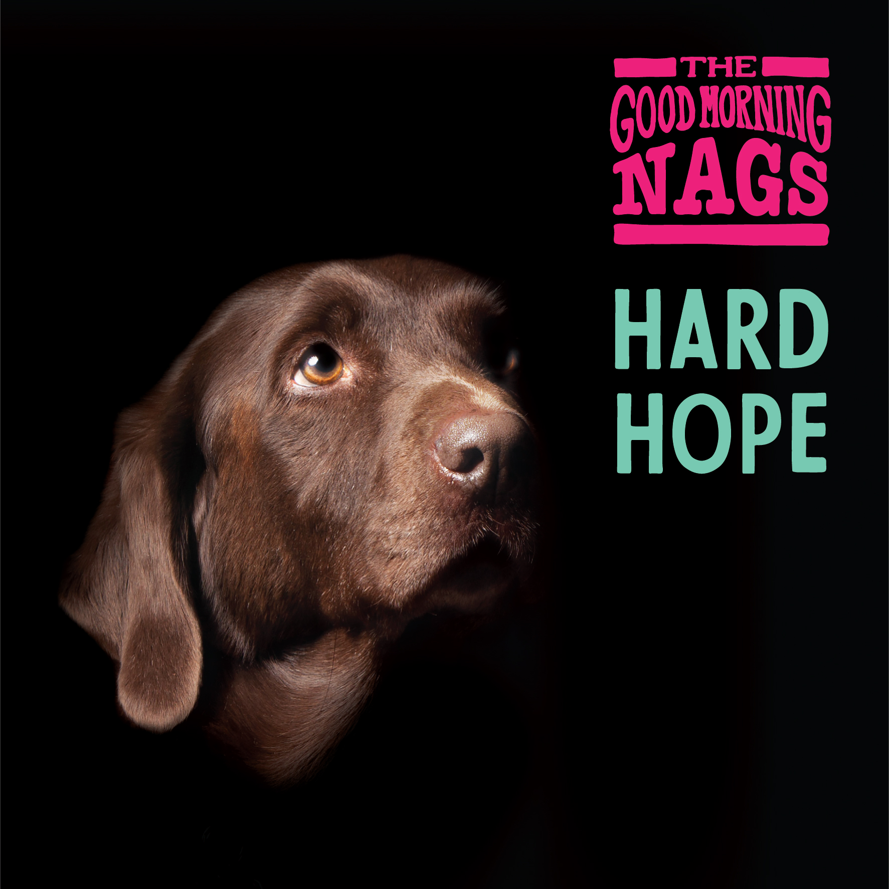 """""""Hard Hope"""" Available Now! - Our new album is now available on all platforms! Follow us on Spotify to hear it all!"""