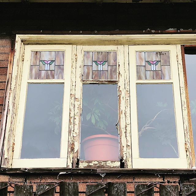 These dining room windows have seen better days (actually, they're representative of the whole house), but that's a sweet little pattern in the upper lights. #fremont #seattle #centeroftheuniverse #stainedglass #1917 #bungalow #artsandcrafts #craftsman #opalescentglass #artglass #heritageartglass