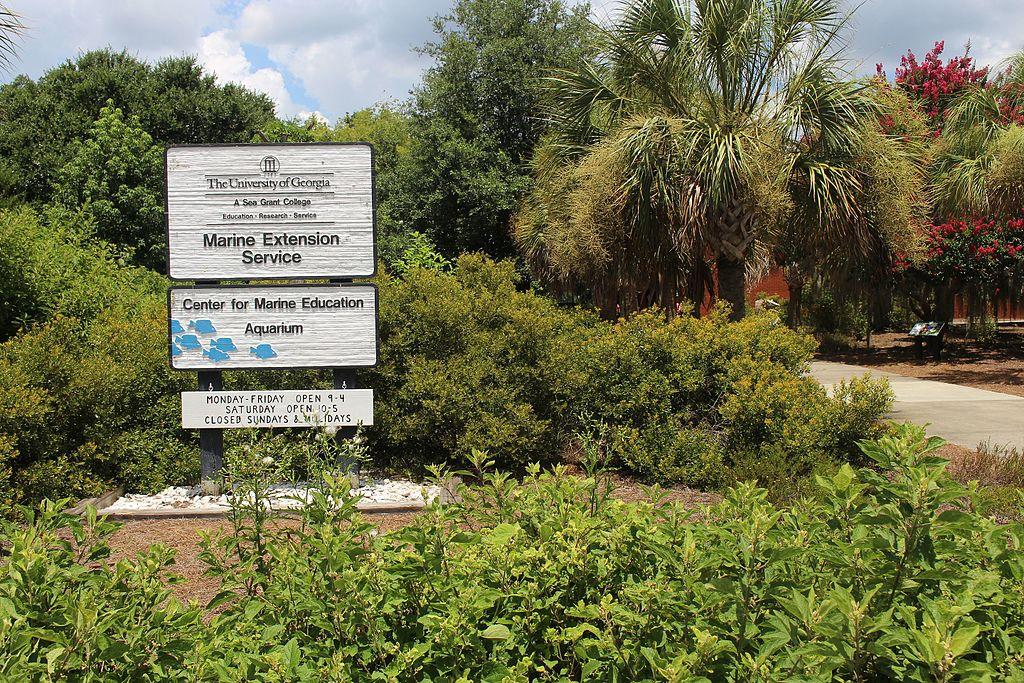 UGA_Marine_Extension_Service,_Center_for_Marine_Education_Aquarium.jpg