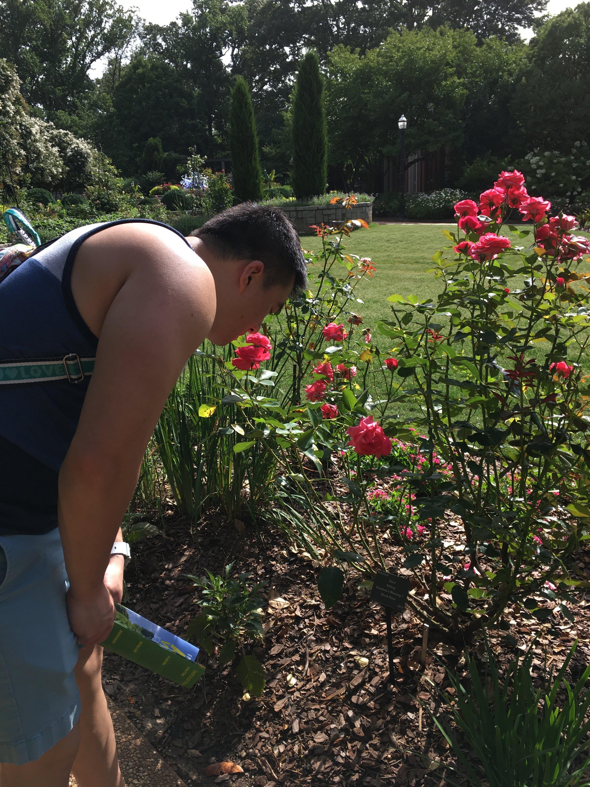 ATL Botanical Garden - Roses.JPG