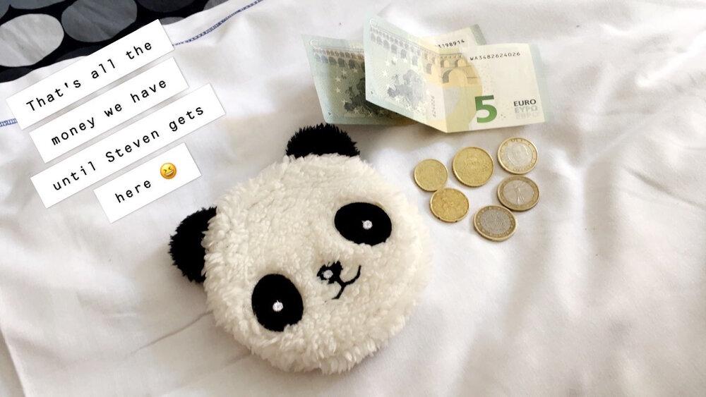 Euros and panda coin purse.JPG
