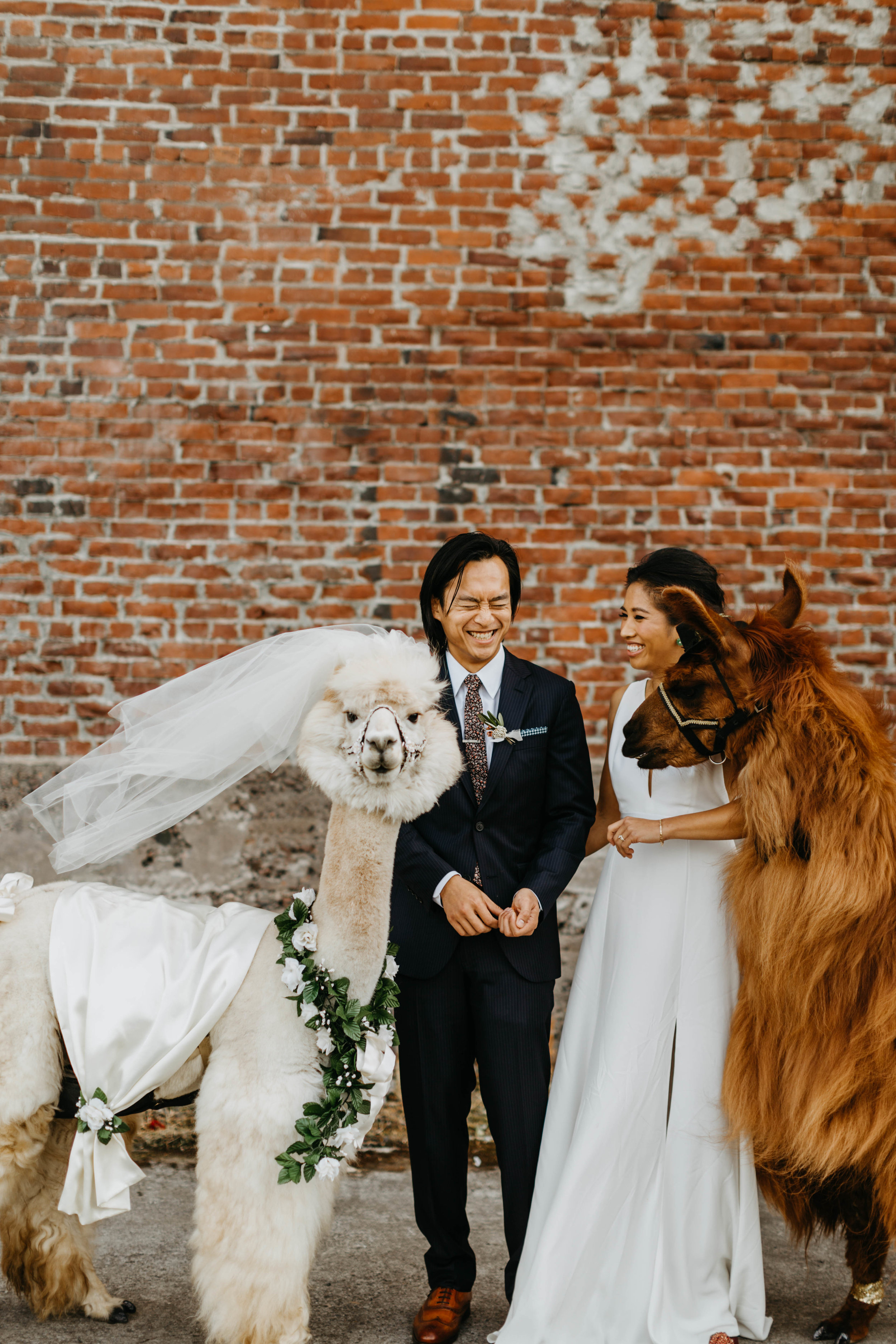 tv_wedding-58.jpg