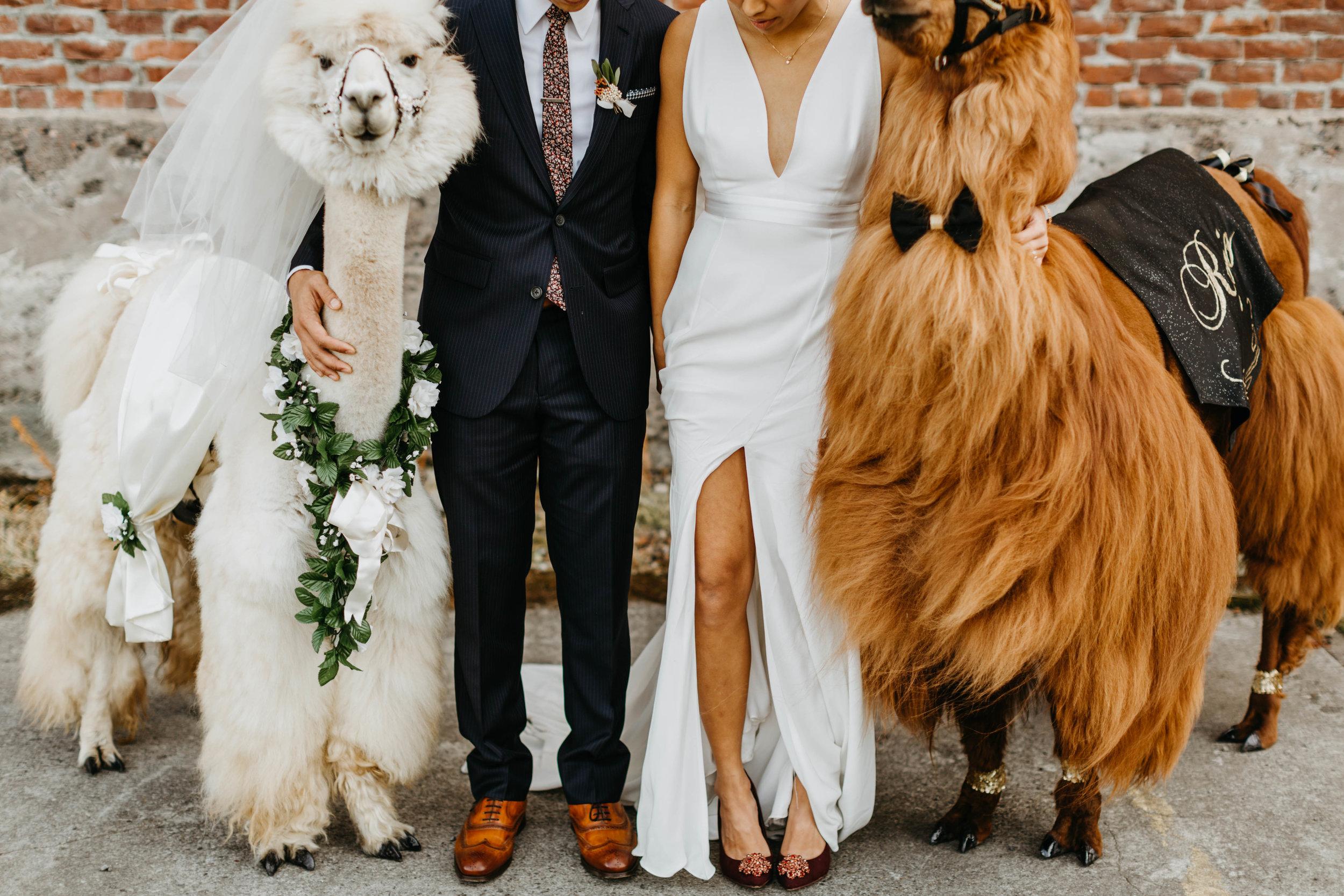 tv_wedding-49.jpg