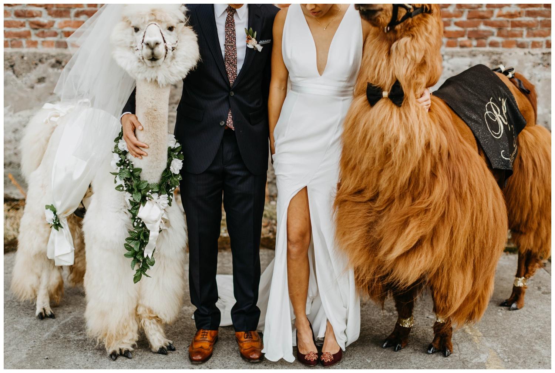 castaway_portland_wedding_jasminejphotography16.JPG