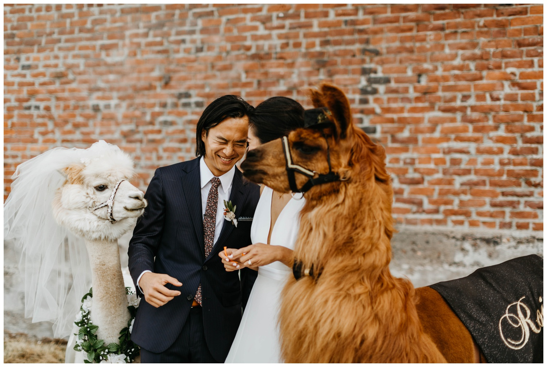 castaway_portland_wedding_jasminejphotography18.JPG