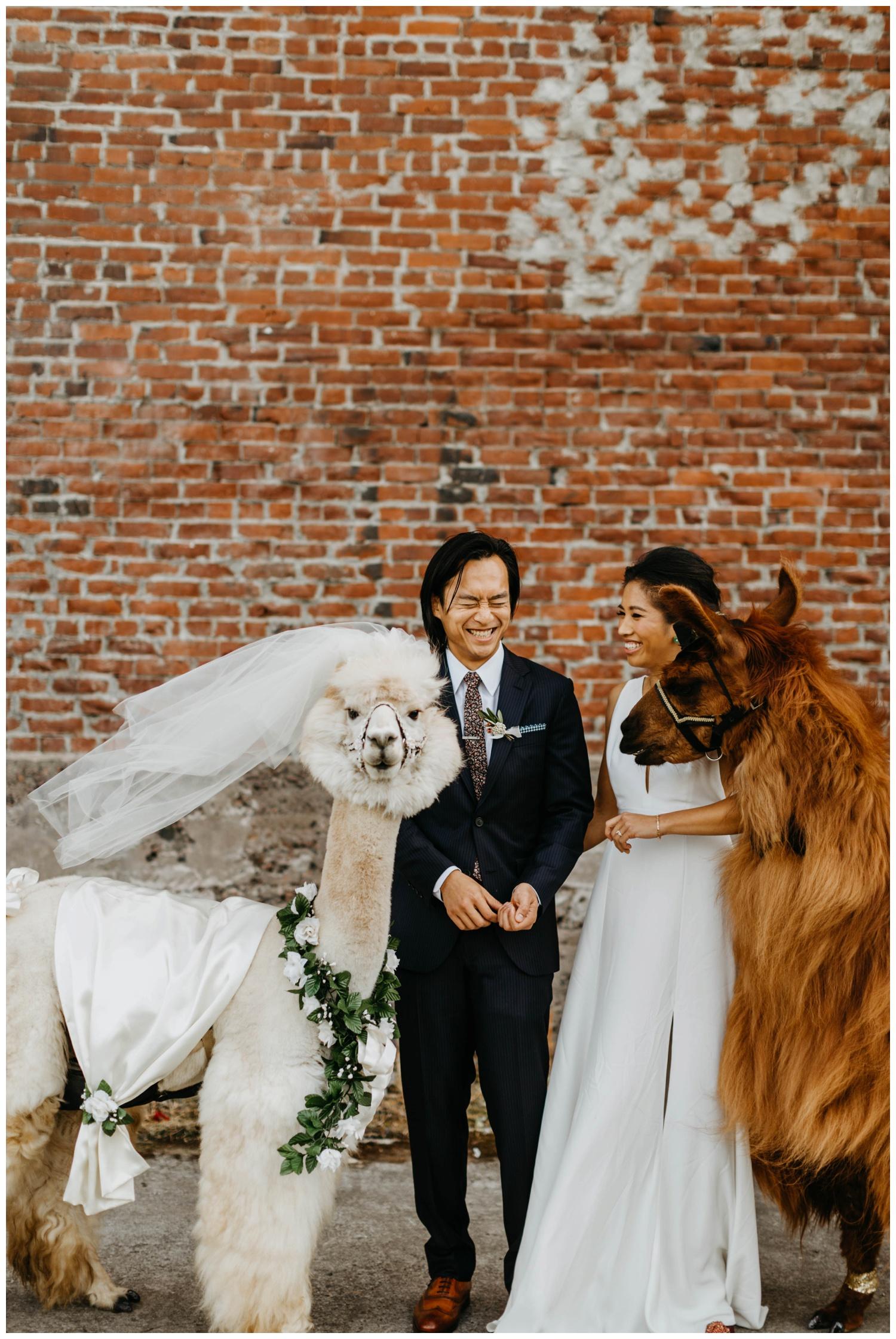 castaway_portland_wedding_jasminejphotography20.JPG