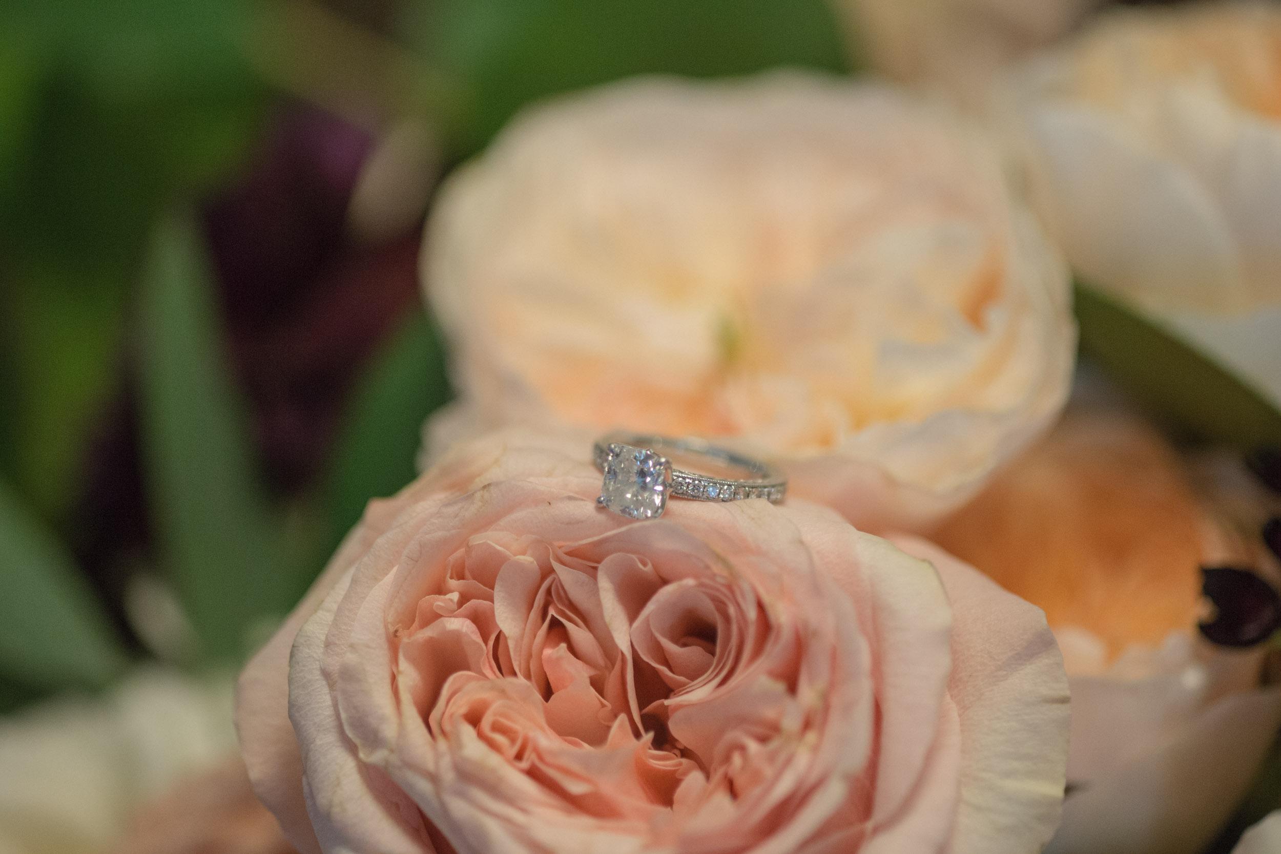 THE WEDDING OF PETER & NICOLE-41.jpg