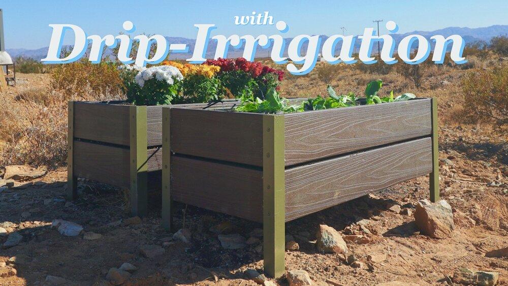Self Watering Planters Modern Builds