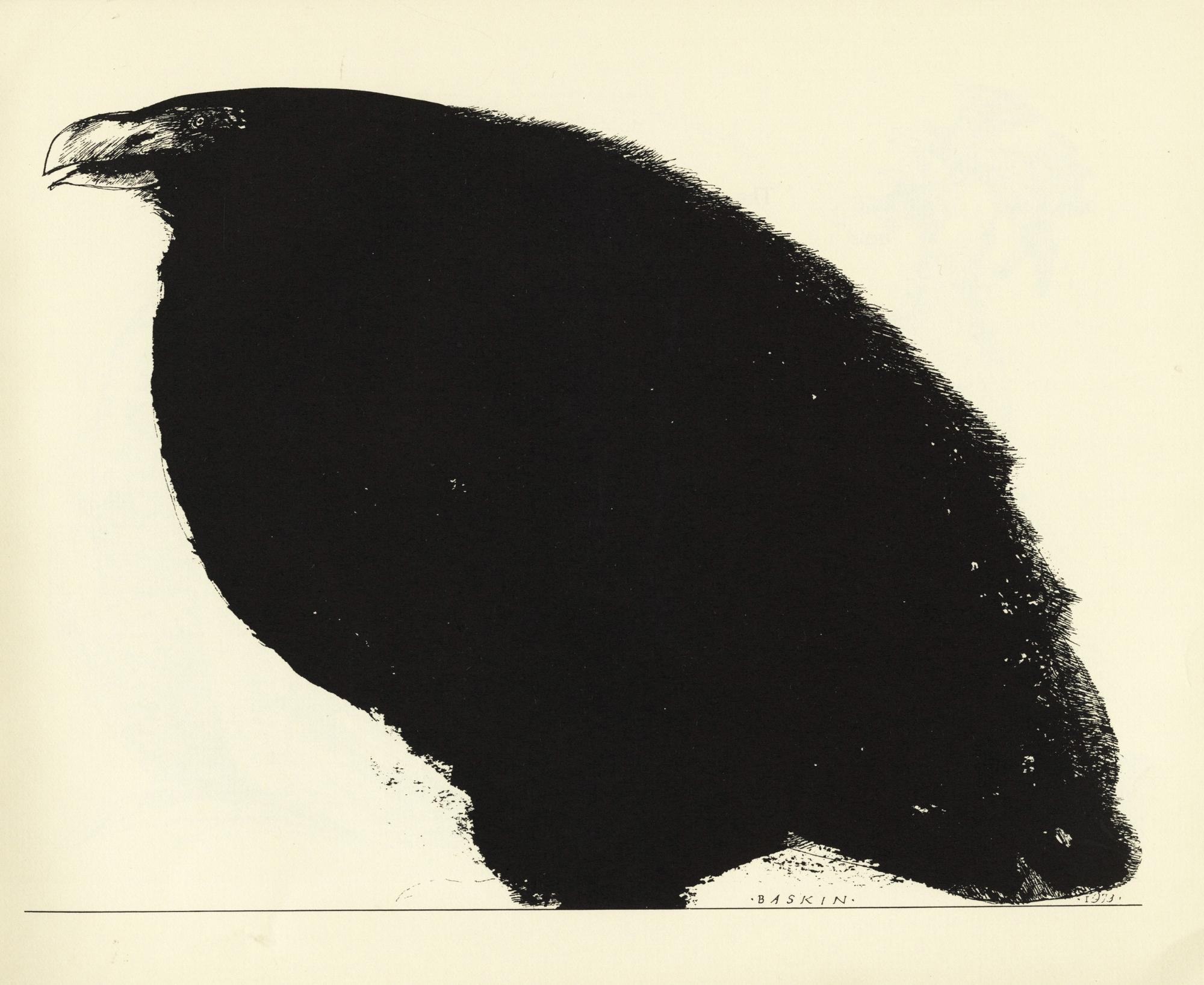 Illustration for Cave Birds - Leonard Baskin