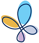 Transparent butterfly (small).png
