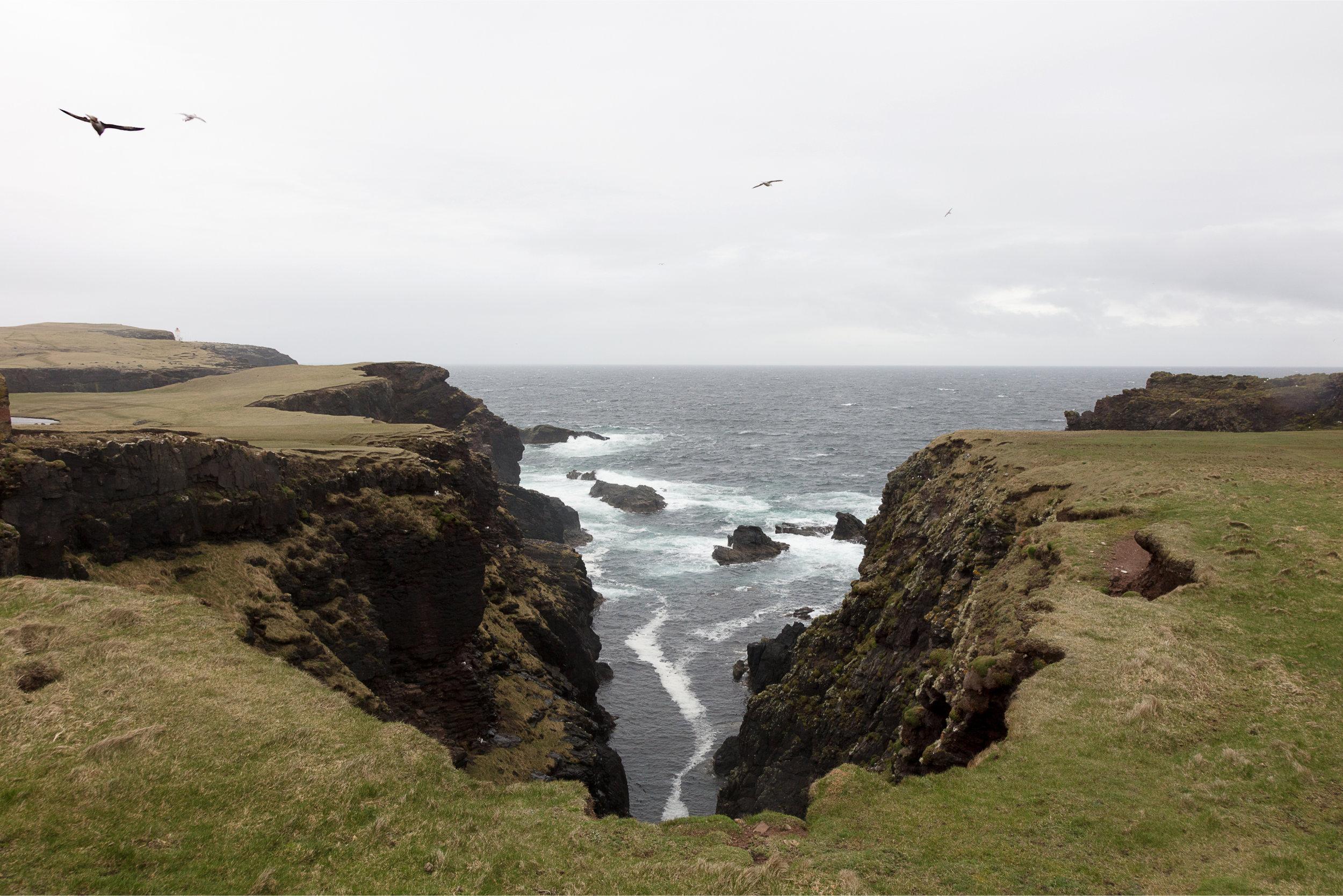 Shetland first edit-26.jpg