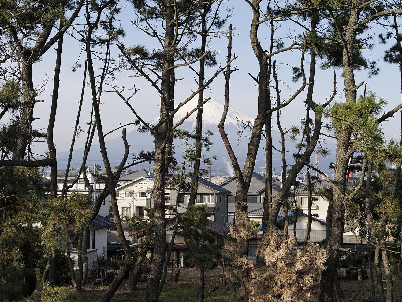 5_Thirty-Six Views of Mount Fuji 28 (Suzukawa-higashichou, Suzukawahigashichou).jpg