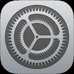 iOS Settings Icon