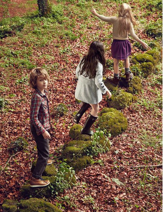 7forest.jpg