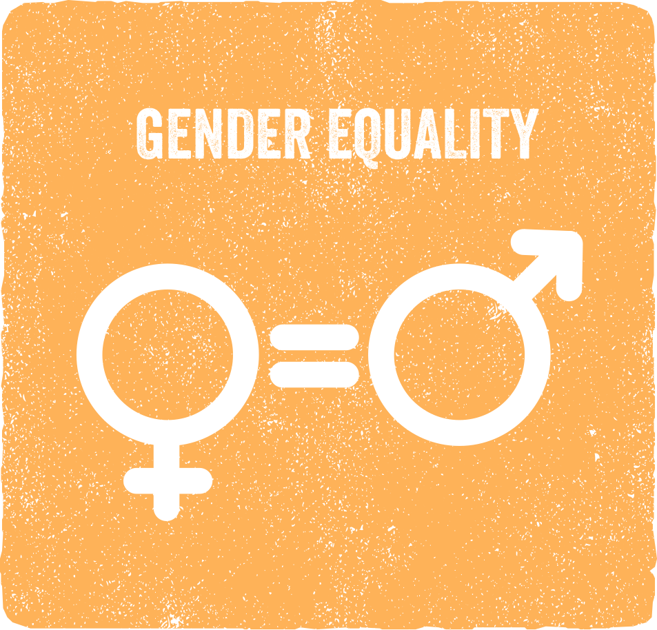 Copy of Copy of Gender Equality