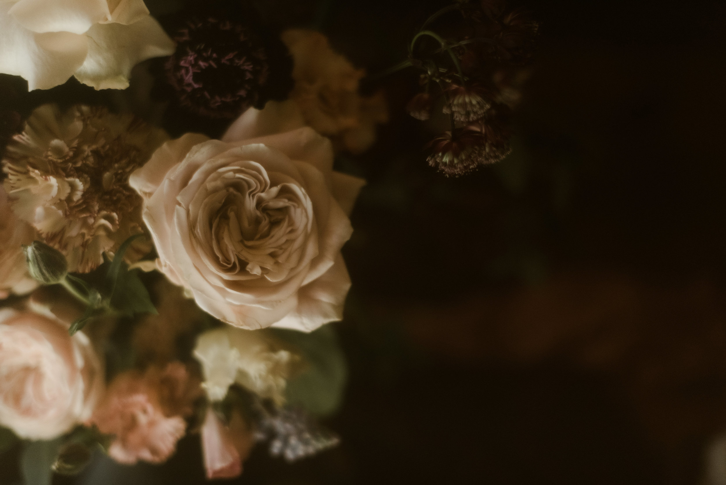 DarkRomance-GHphoto-8.jpg