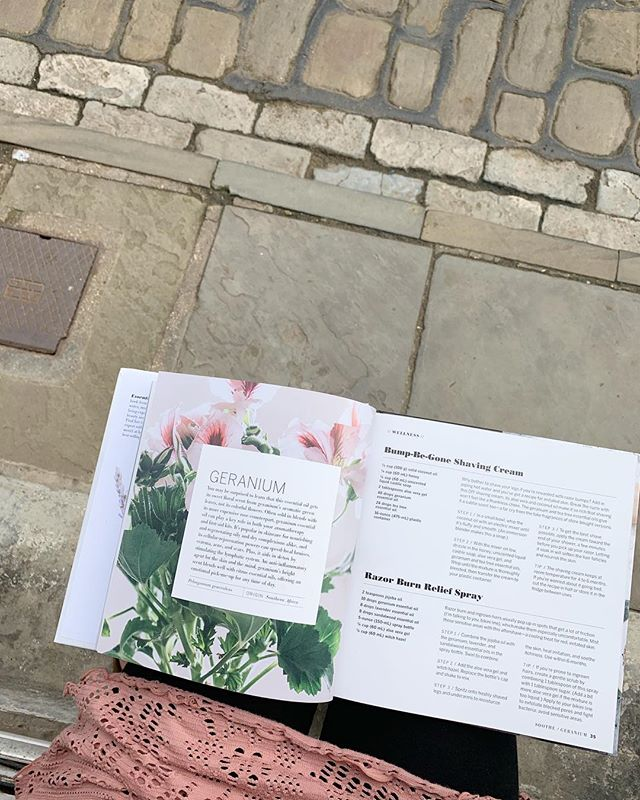 Sitting on the steps of @anniescottageretreat, reading up about Geranium essential oil. The scent is actually from the green leaves not the flower petals. Which i was told years ago but have forgotten. Geranium has always been one of my favourite oils as it's the poor mans rose oil,  still nourishing and regenerating to oily and dry skin and smells beautiful. Are you a big Geranium fan?