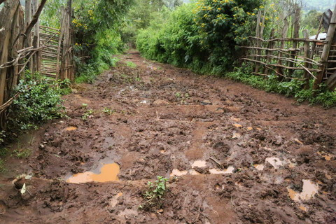 The road that Gobena walks on to collect water from the river. Image by WaterAid/Behailu Shiferaw