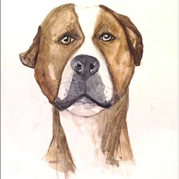pet-portrait-product-v2.jpg